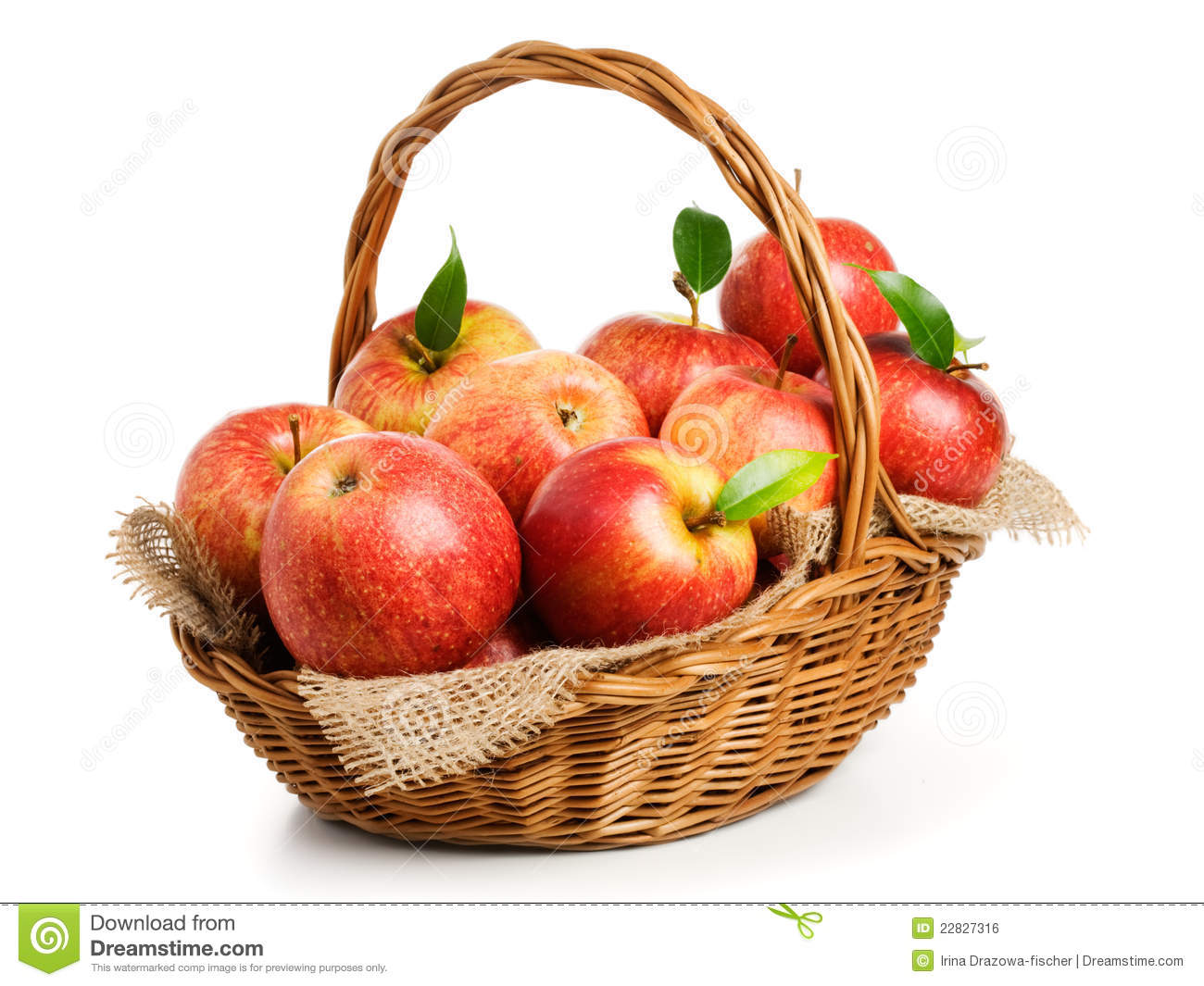 Jonagold Apples In A Basket Royalty Free Stock Image - Image: 22827316