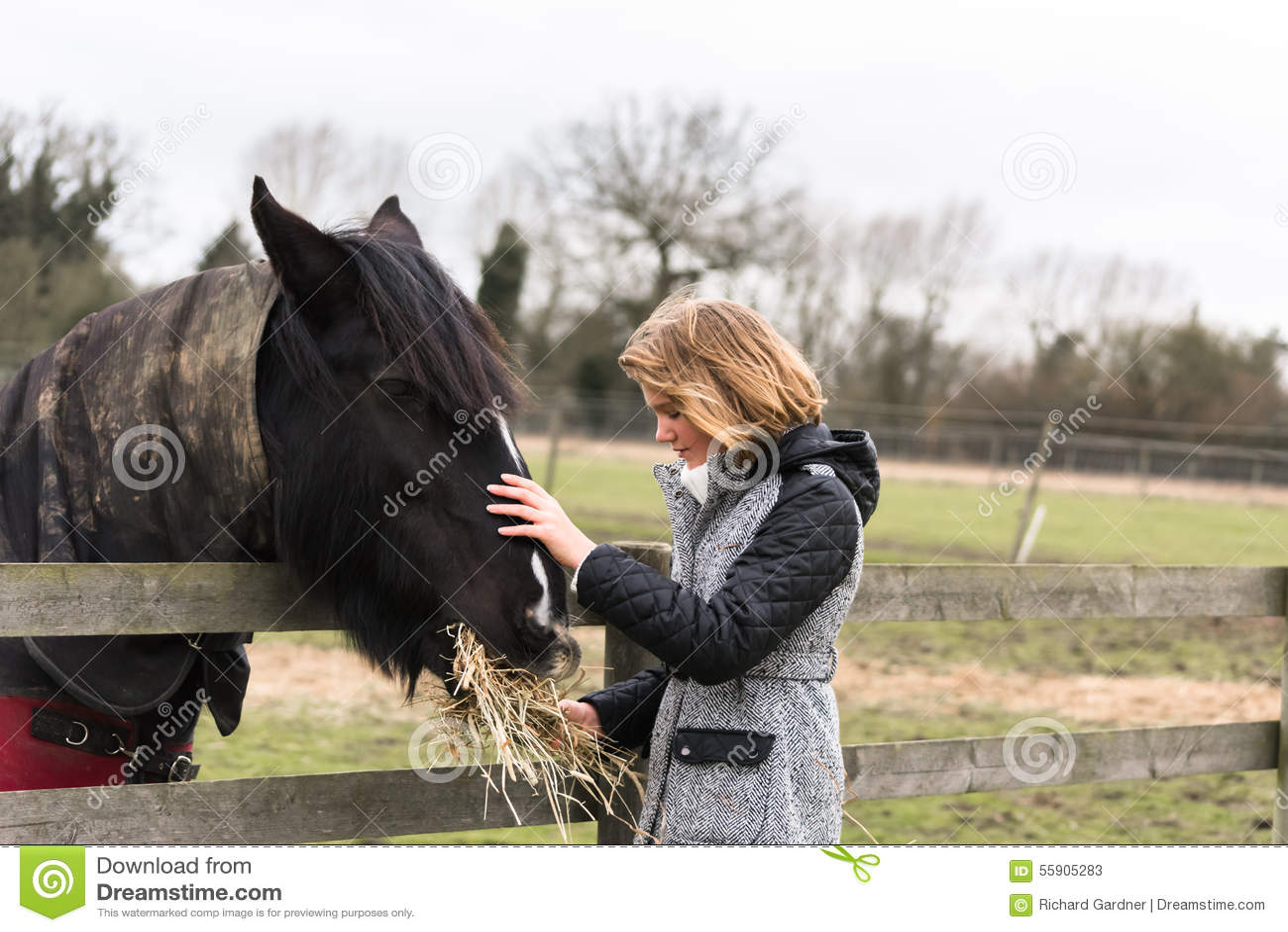 Jong meisjes voedend paard