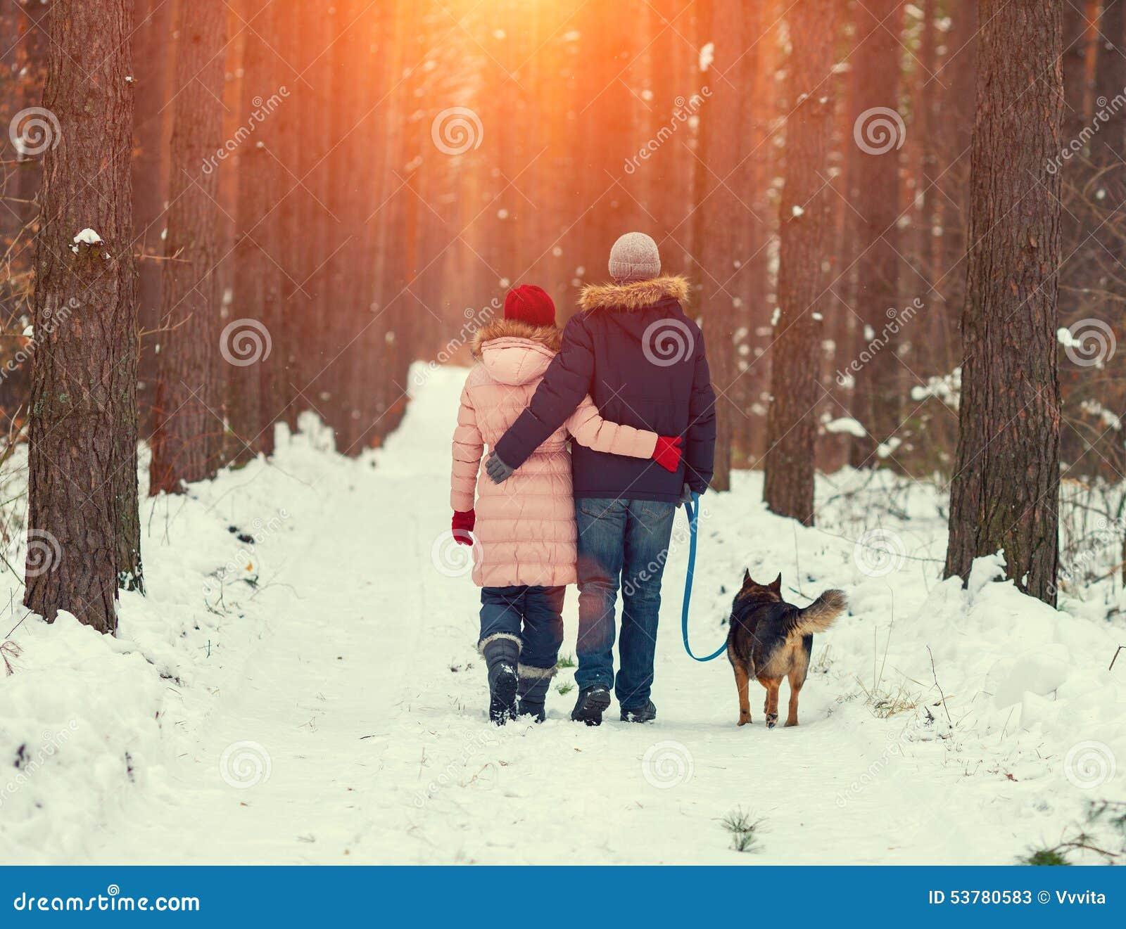 Jong paar die met hond in het de winterbos lopen