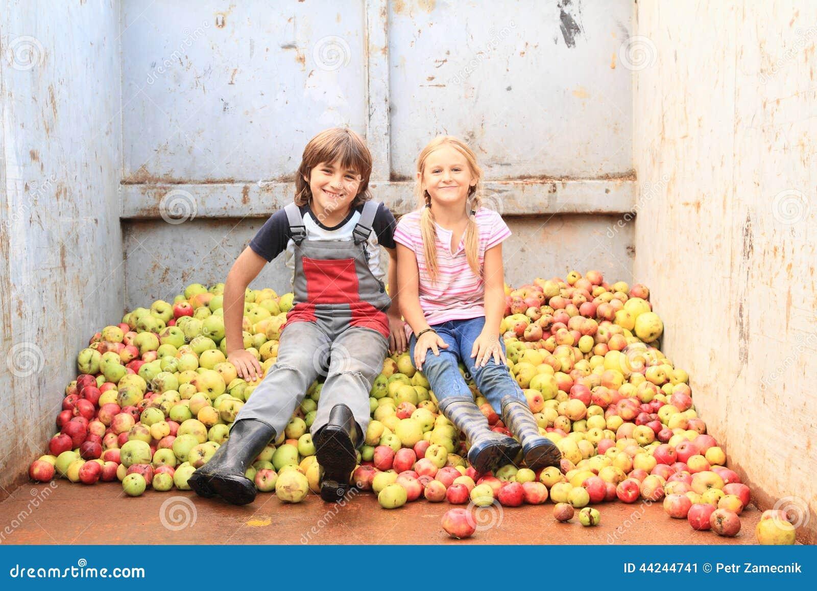 Jonge geitjes op appelen