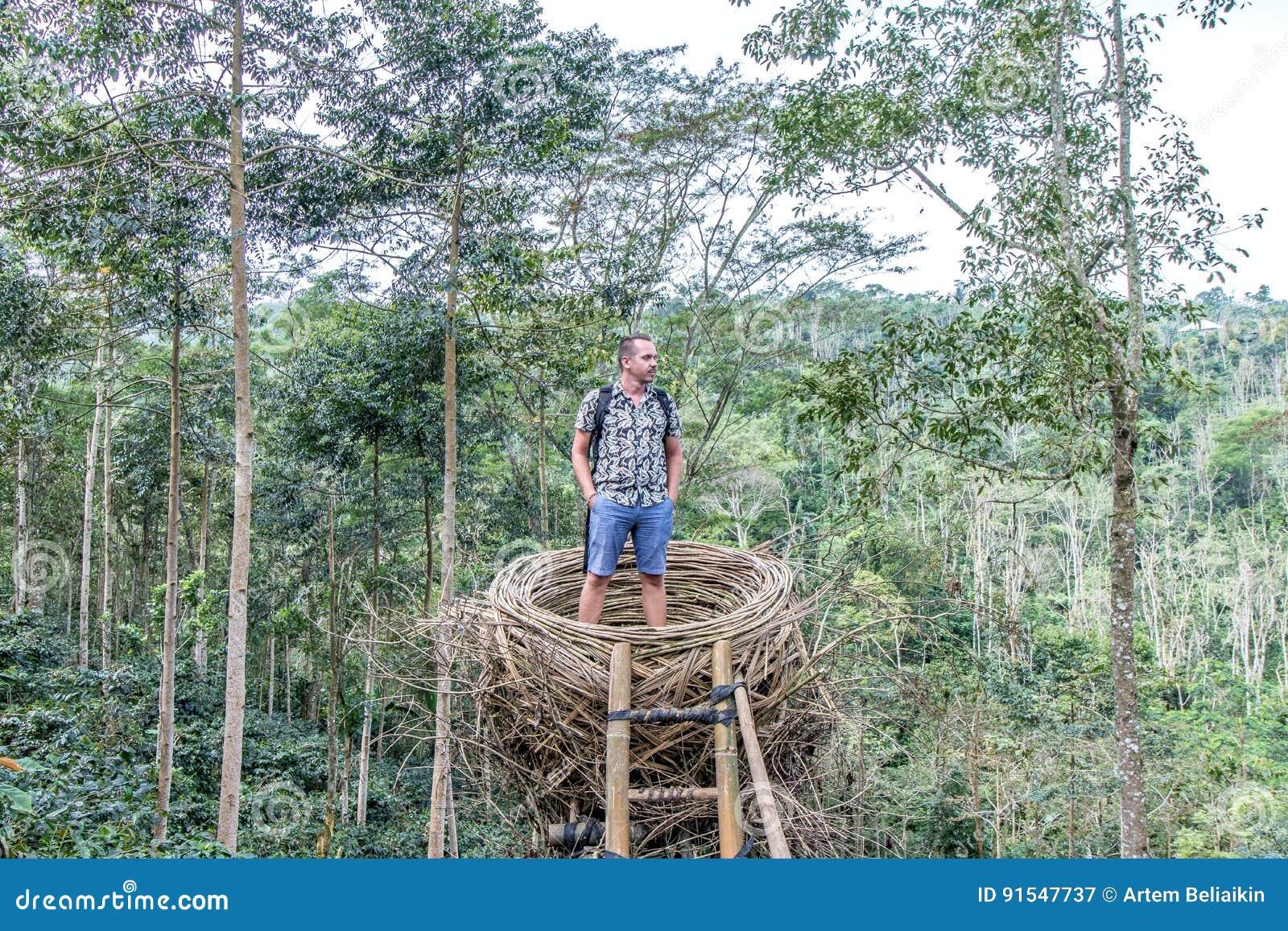 Betere Jonge Mens In Regenwoud Van Het Tropische Eiland Van Bali ML-12