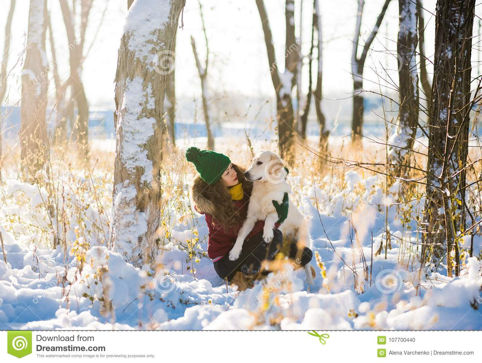 Jonge mooie vrouw die golden retrieverhond in de winterbos koesteren