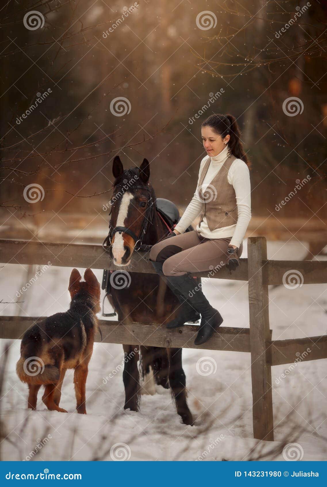 Jonge mooie vrouw met paard en het Duitse openluchtportret van de herdershond