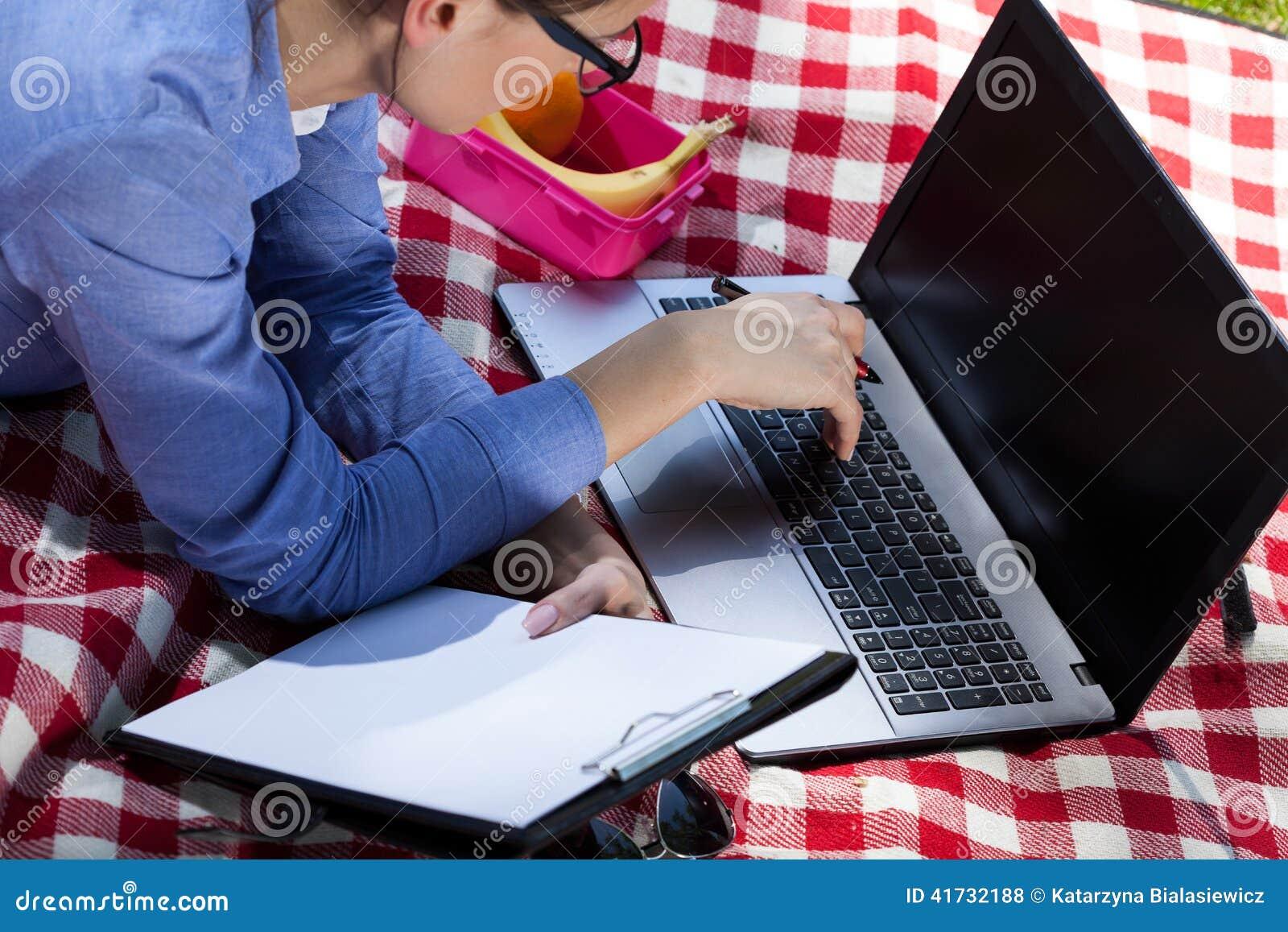 Jonge onderneemster die aan laptop tijdens picknick werken