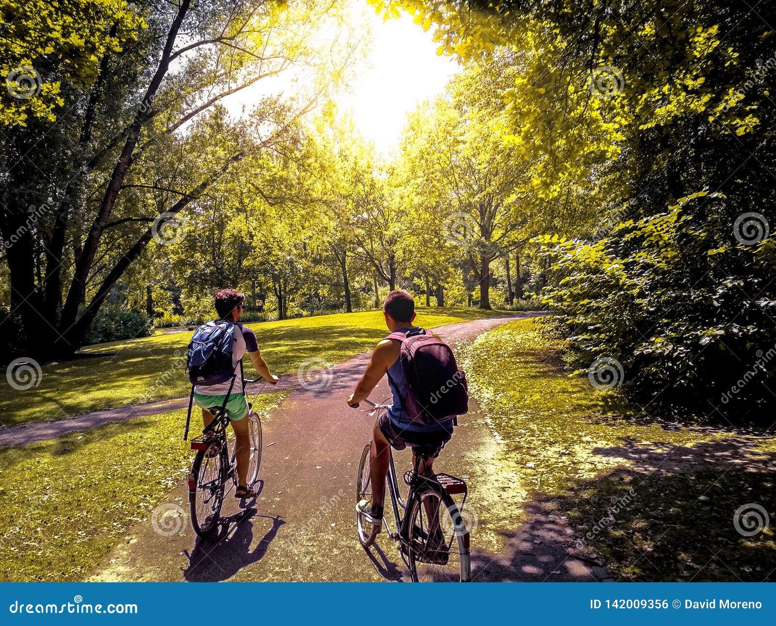 Jonge studenten die hun fietsen berijden op een park
