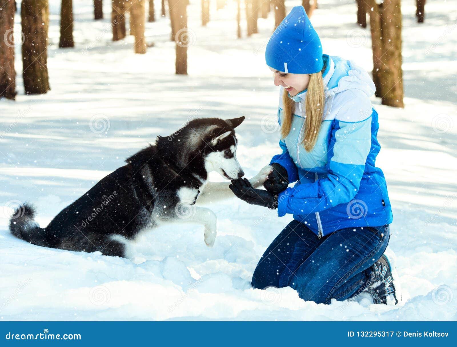 Jonge vrouw die in de winter sneeuwbos met haar hond in een de winterdag lopen Vriendschapshuisdier en mens