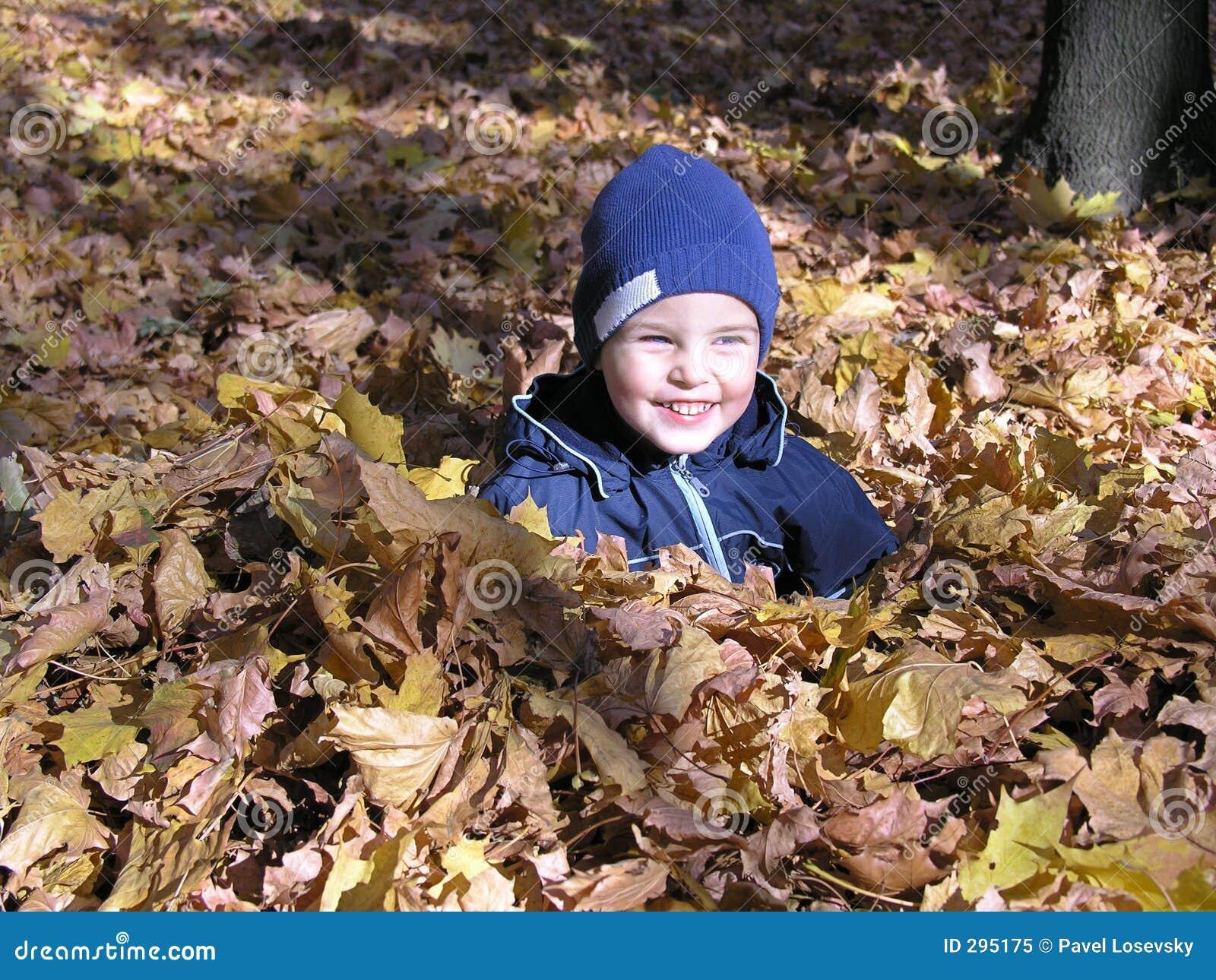 Jongen in de bladeren van de esdoornherfst