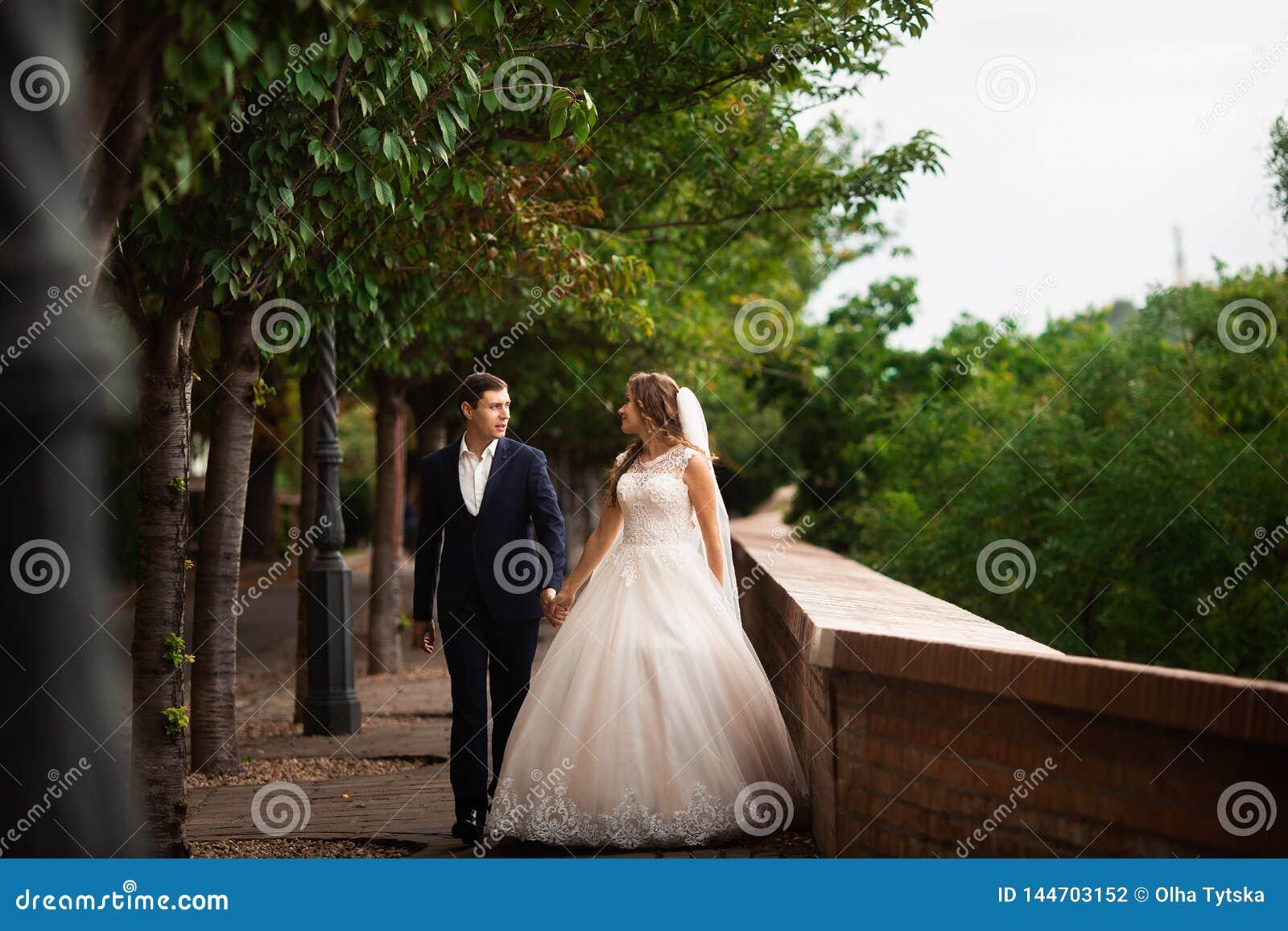 Jonggehuwden die in het park lopen Het gelukkige paar die van het luxehuwelijk en onder bomen lopen glimlachen