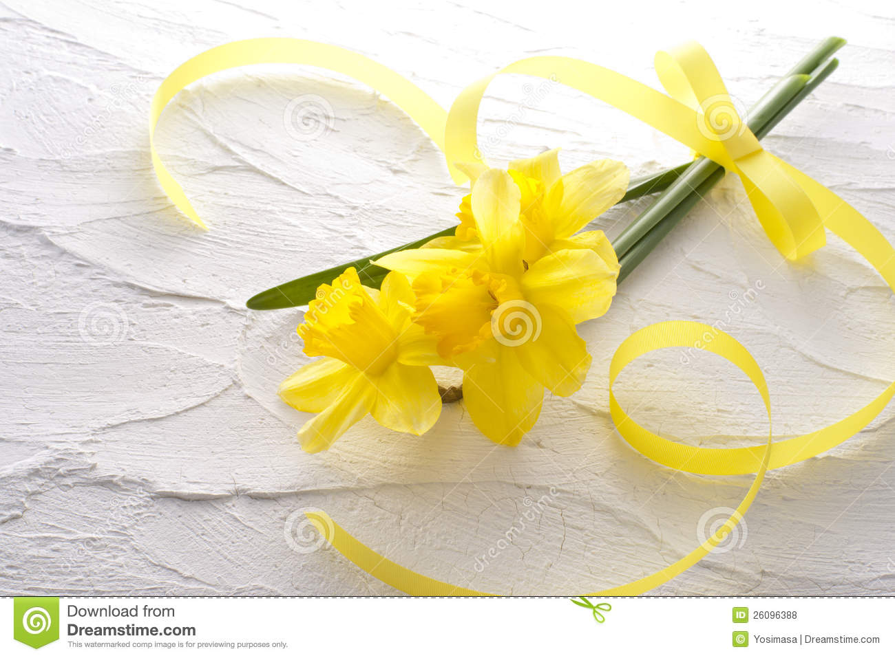Jonquil Flower Royalty Free Stock s Image