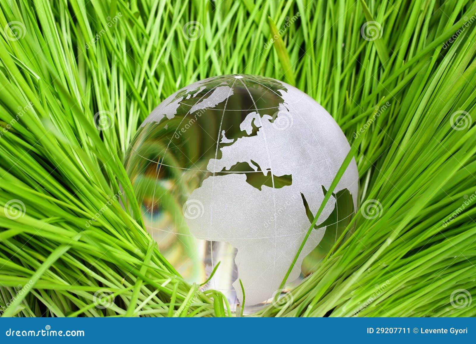 Jord i grönt gräs