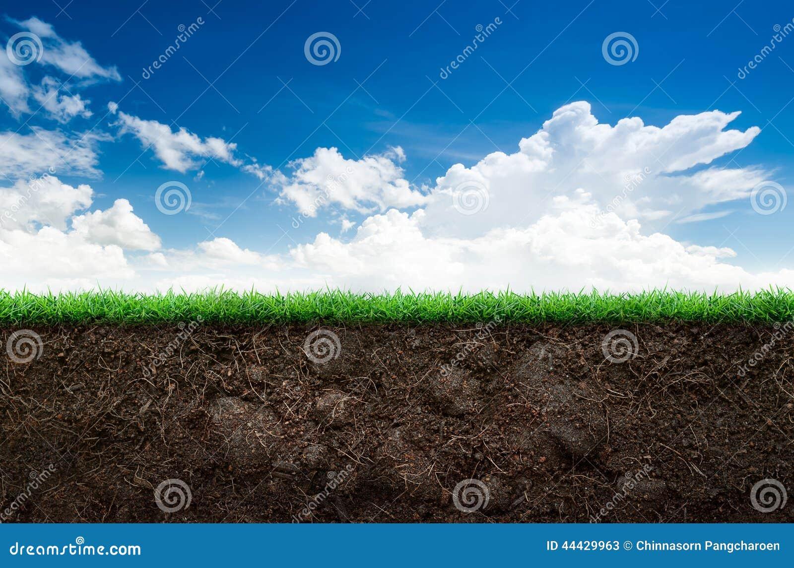 Jord och gräs i blå himmel