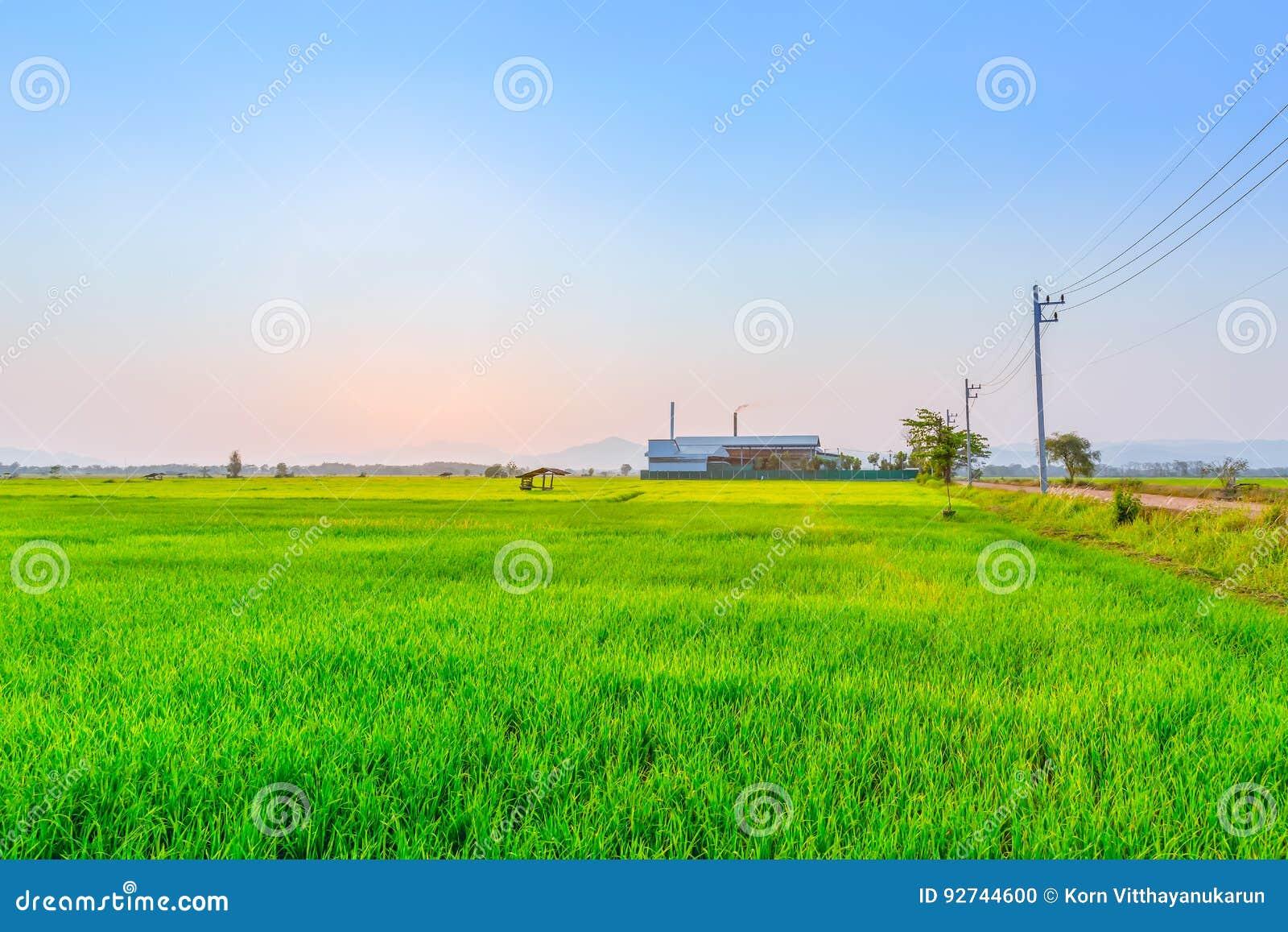 Jordbrukgräsplanfält med branschkraftverket