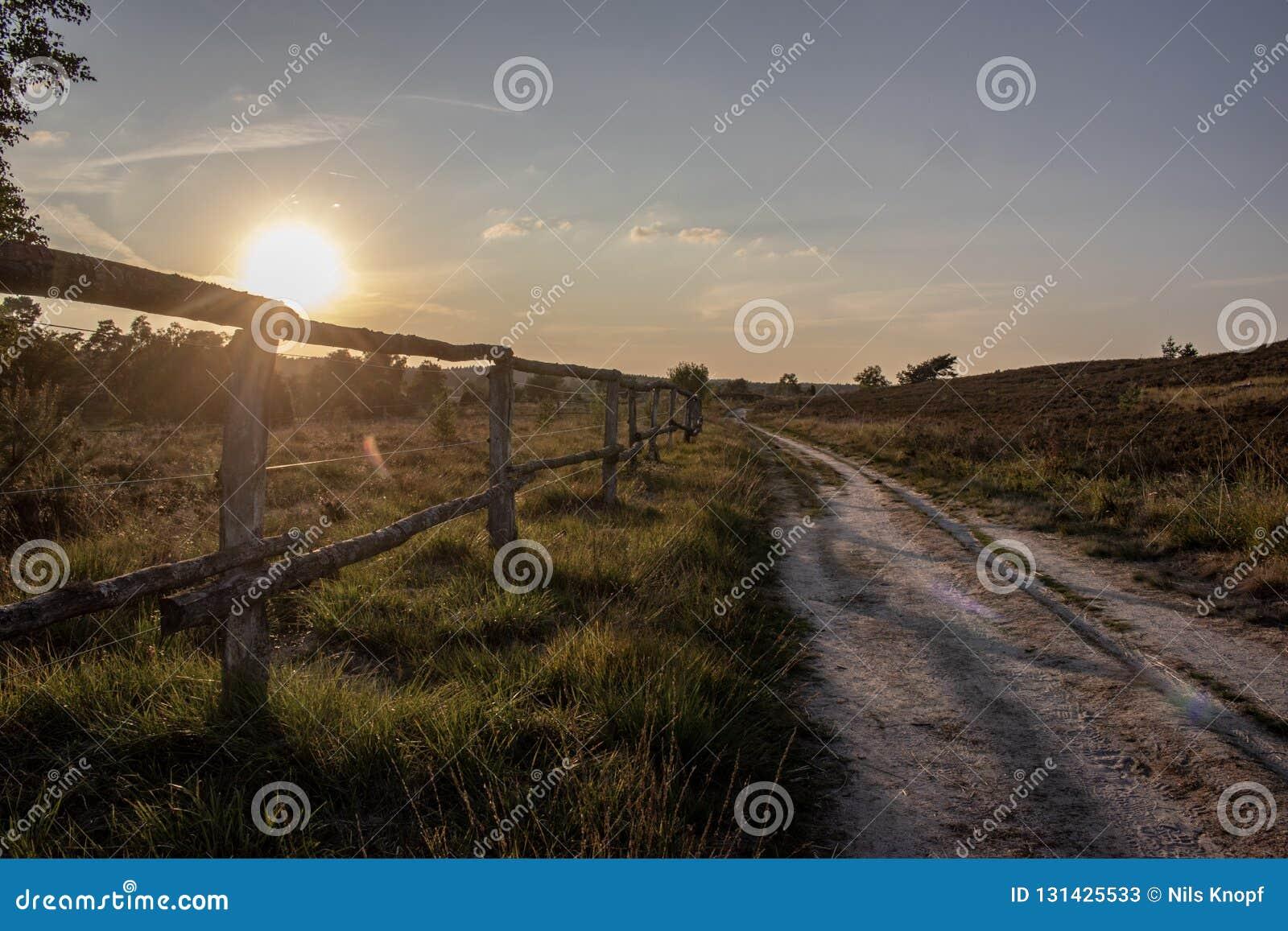 Jordbruksmark på soluppgång