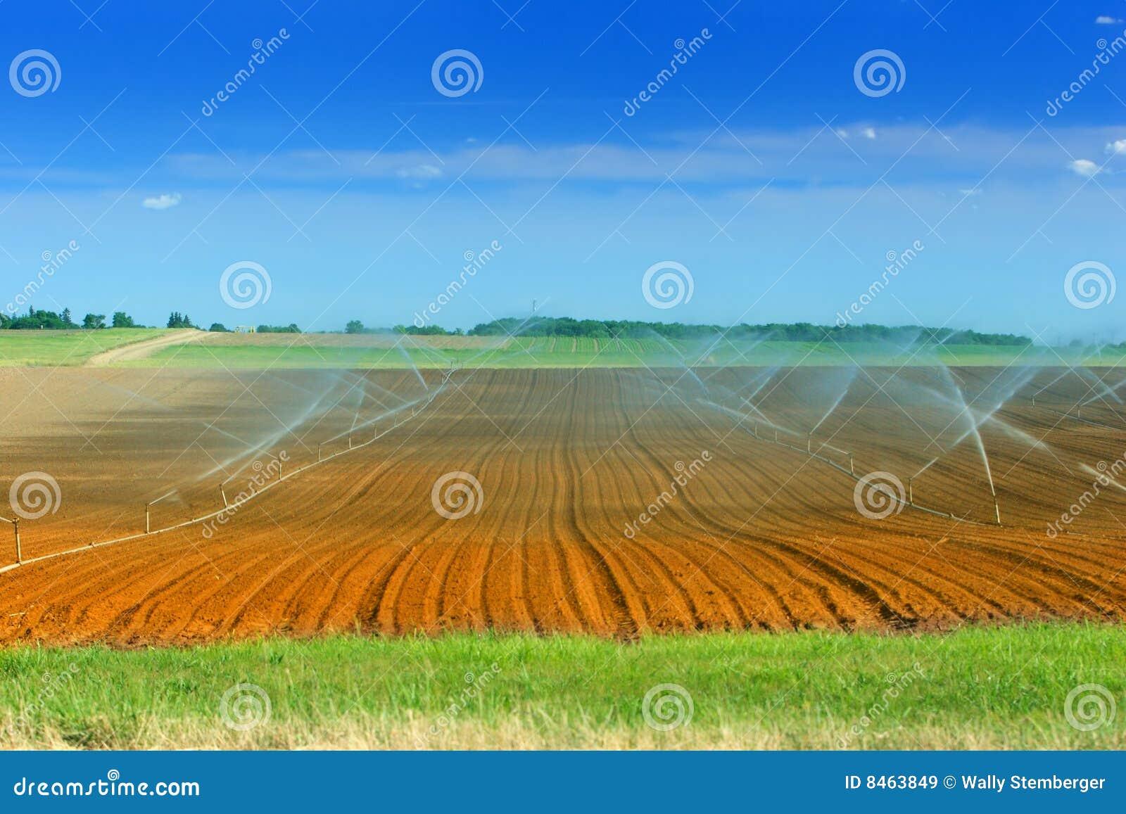 Jordbruksmarkbevattning