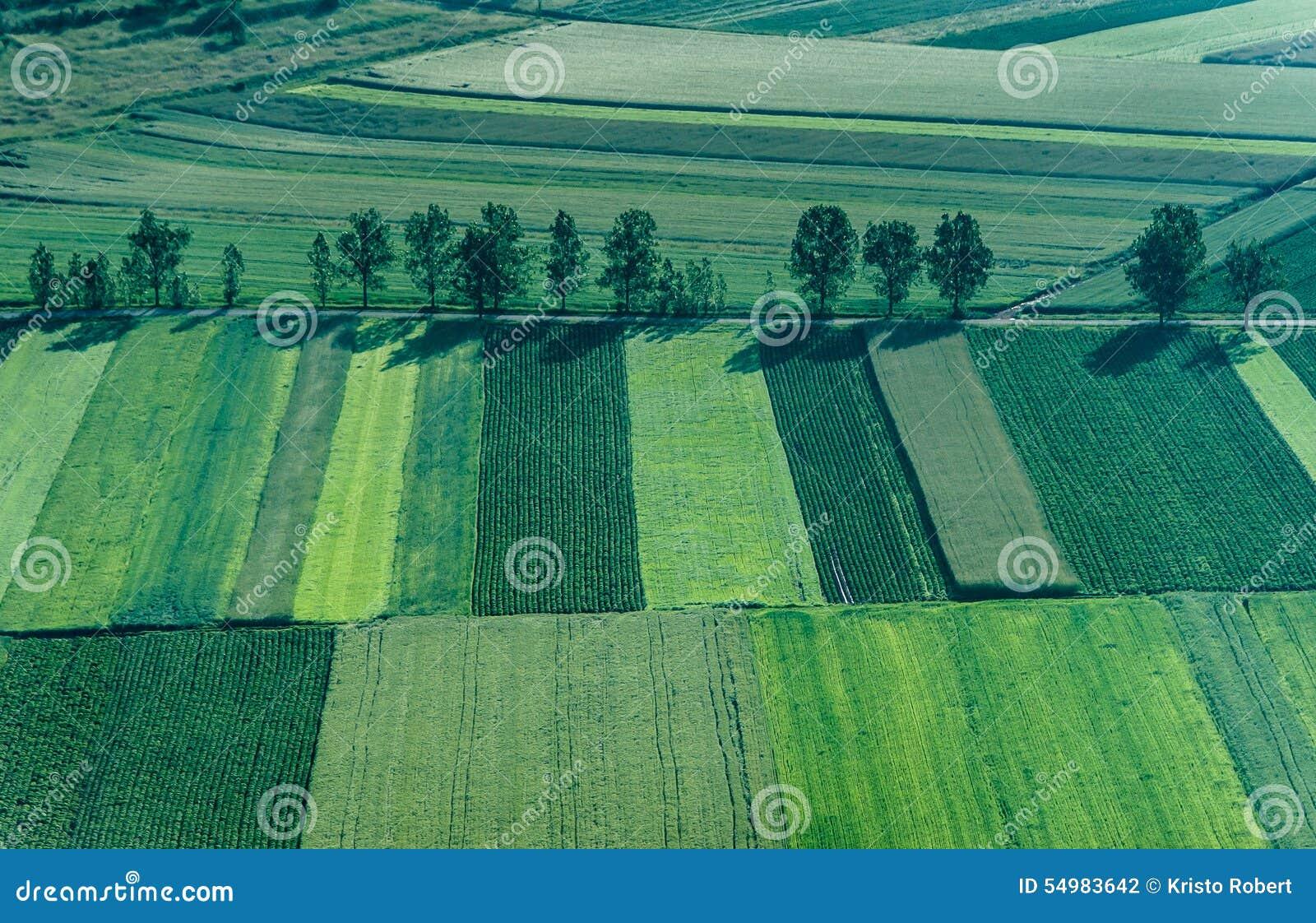 Jordbruksskifte