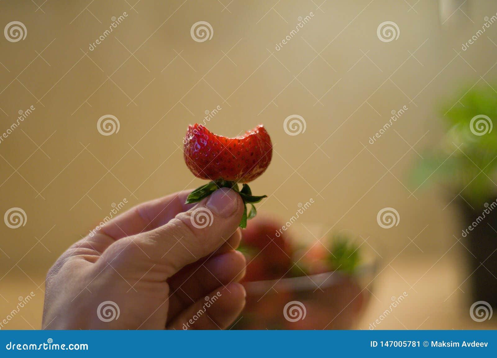 Jordgubbe i kruka på bakgrund och bet bär i hand