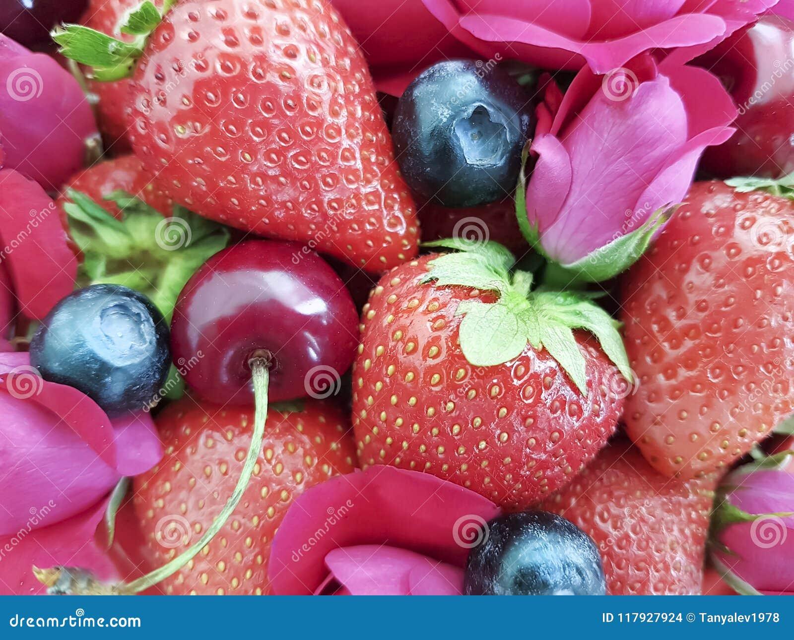 Jordgubbekörsbär, bakgrund för blomma för ros för blåbärefterrättuppfriskning