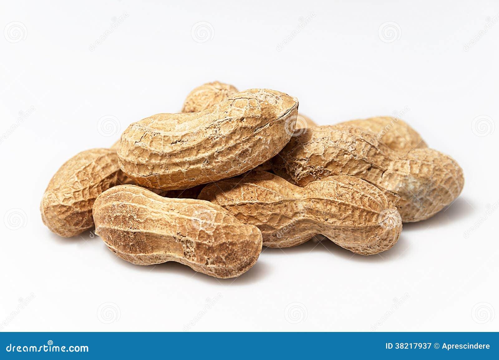 Jordnötter