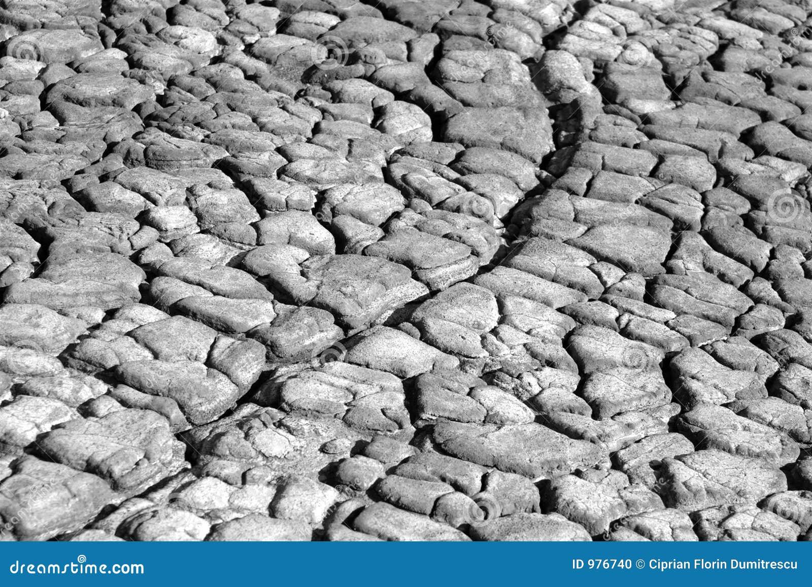 Jordskrynklor