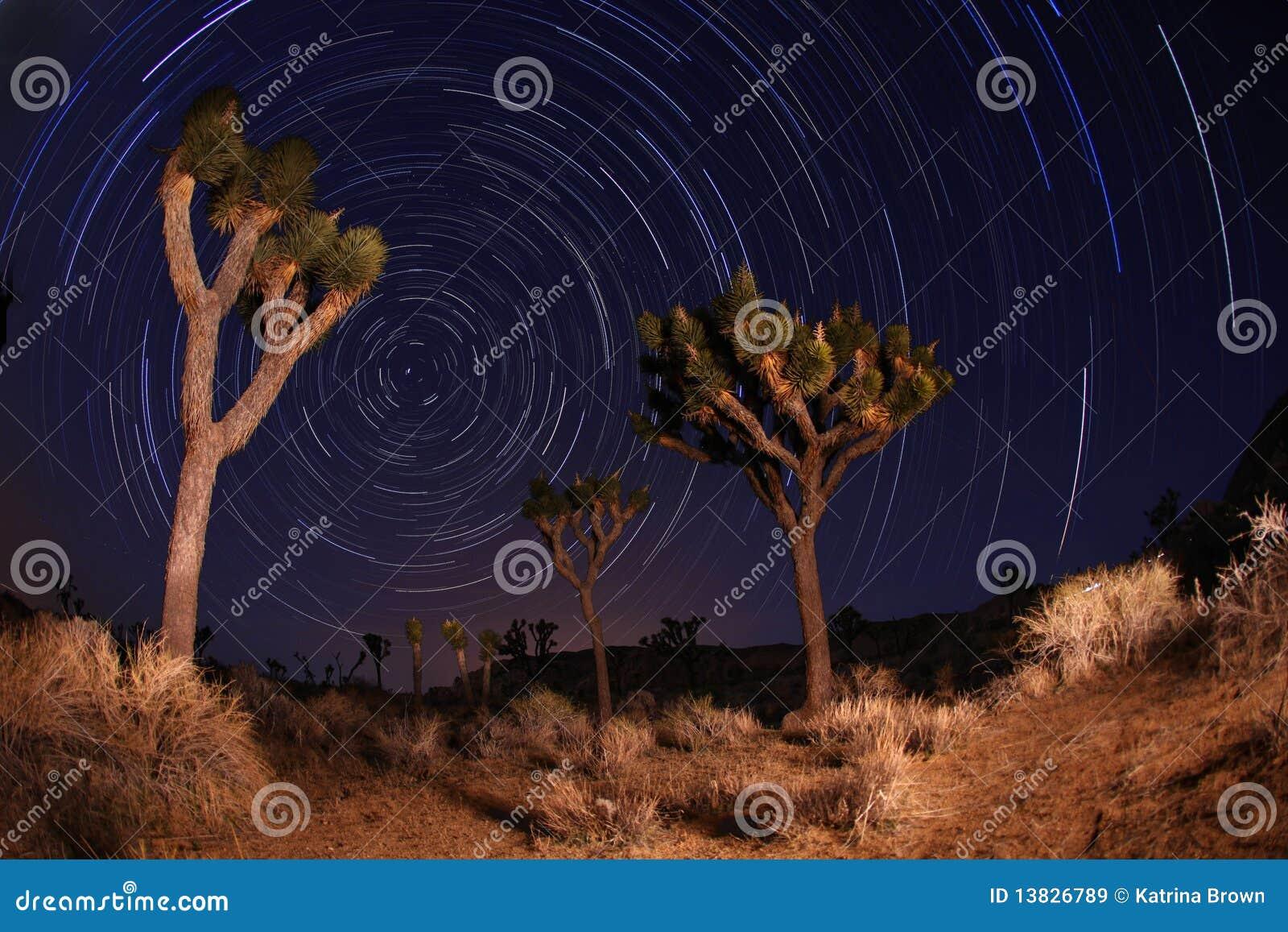 Joshua bakkantr den nationella natten sköt stjärnan treen