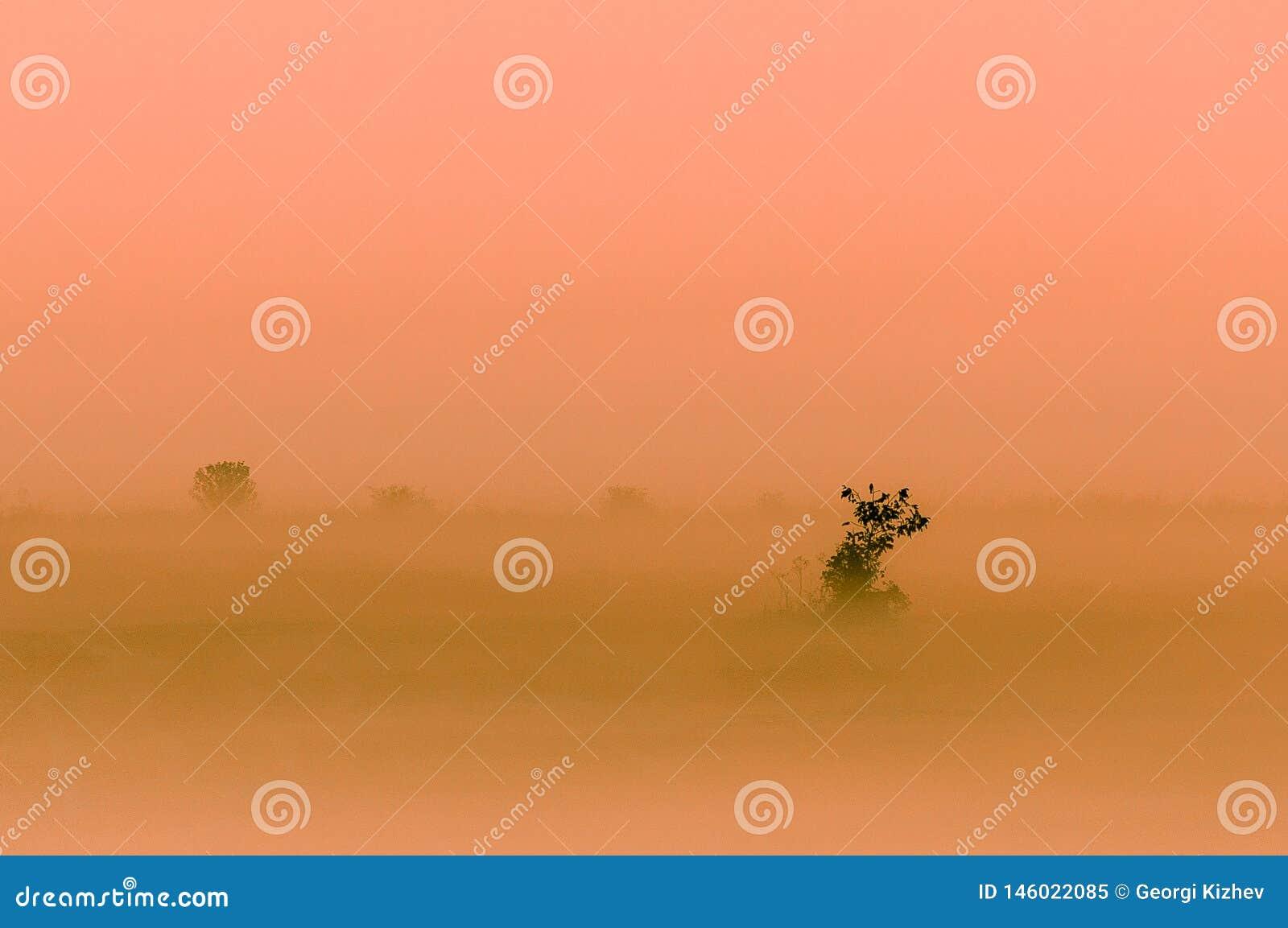 Jour brumeux dans Yambol, la Bulgarie