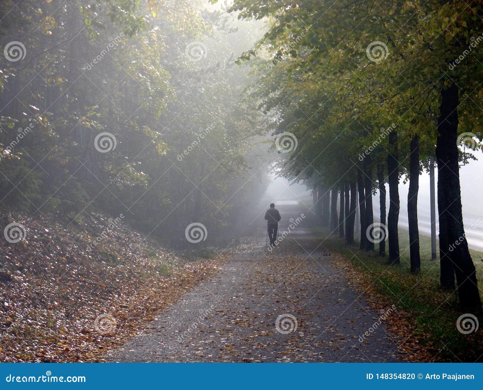 Jour chaud et brillant d automne