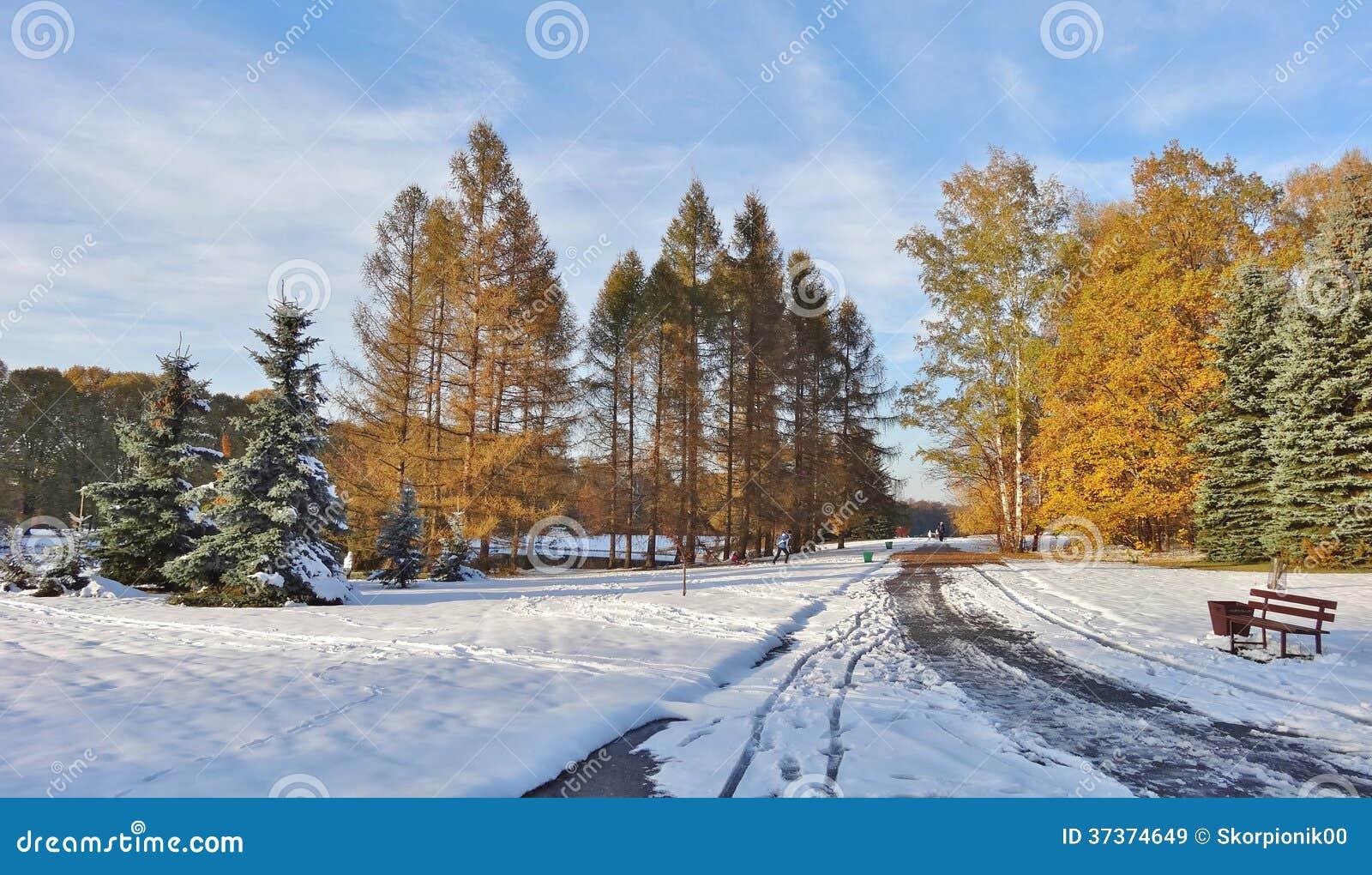 Jour d 39 hiver un jardin botanique image stock image for Jardin botanique hiver 2015