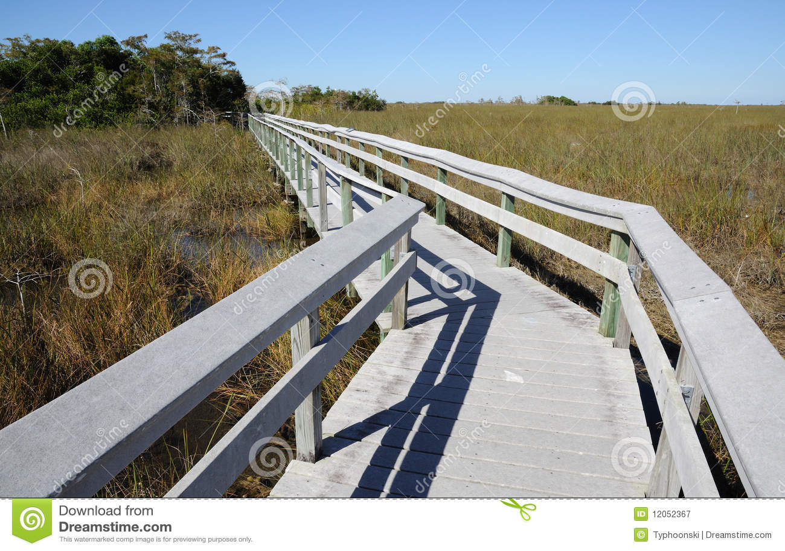 Journal d observation en stationnement national de marais