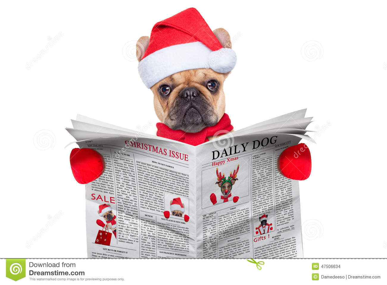 cute merry christmas wallpaper dogs