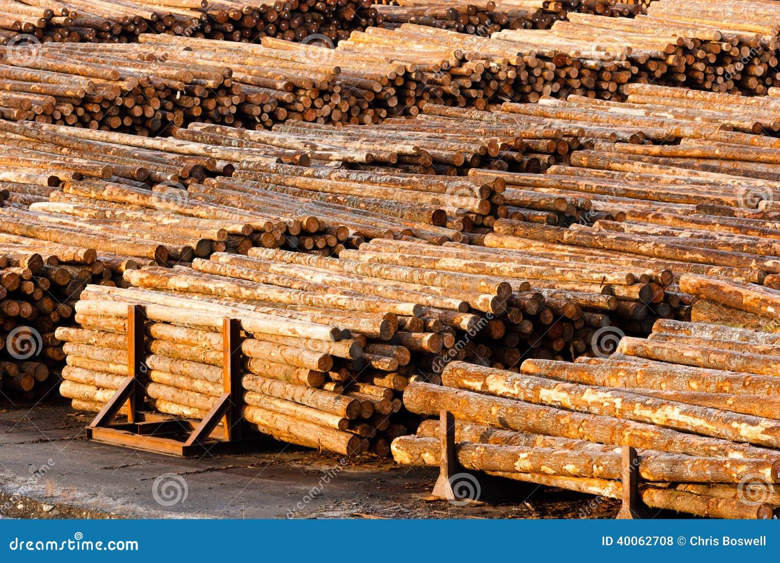 Inredning mät runda : Journalen Avslutar Det Wood SÃ¥gverket För Stammar För Trädet För ...