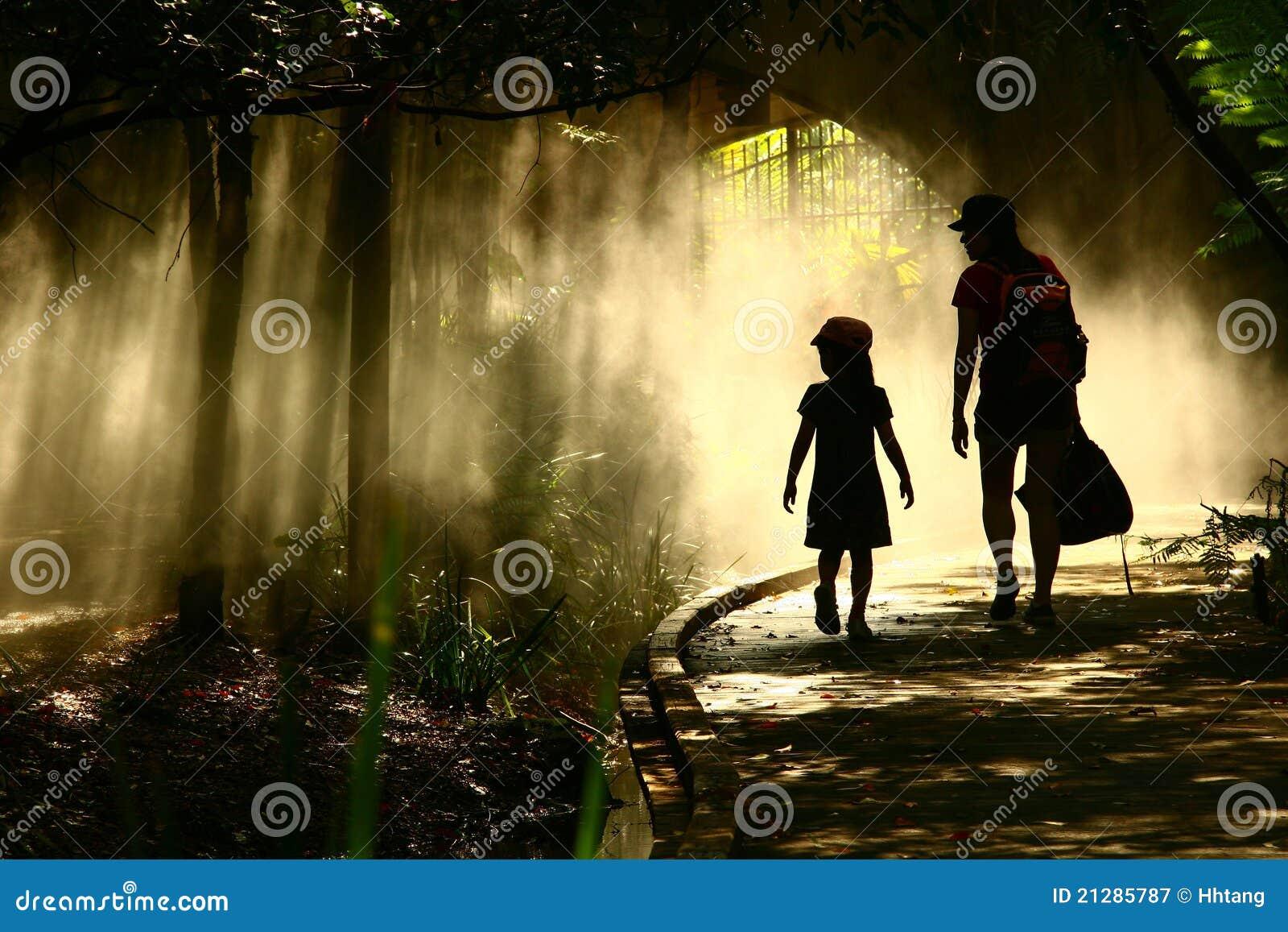 Journey in the mystical garden