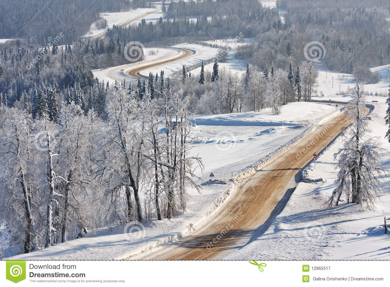 Download The Journey In The Winter Forest Stock Image - Image of road, landscape: 12865517