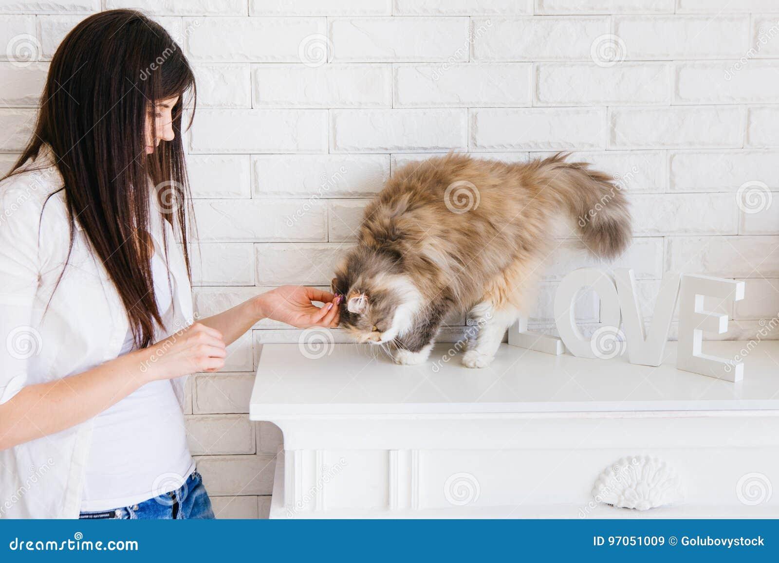 A jovem mulher pets seu gato macio bonito