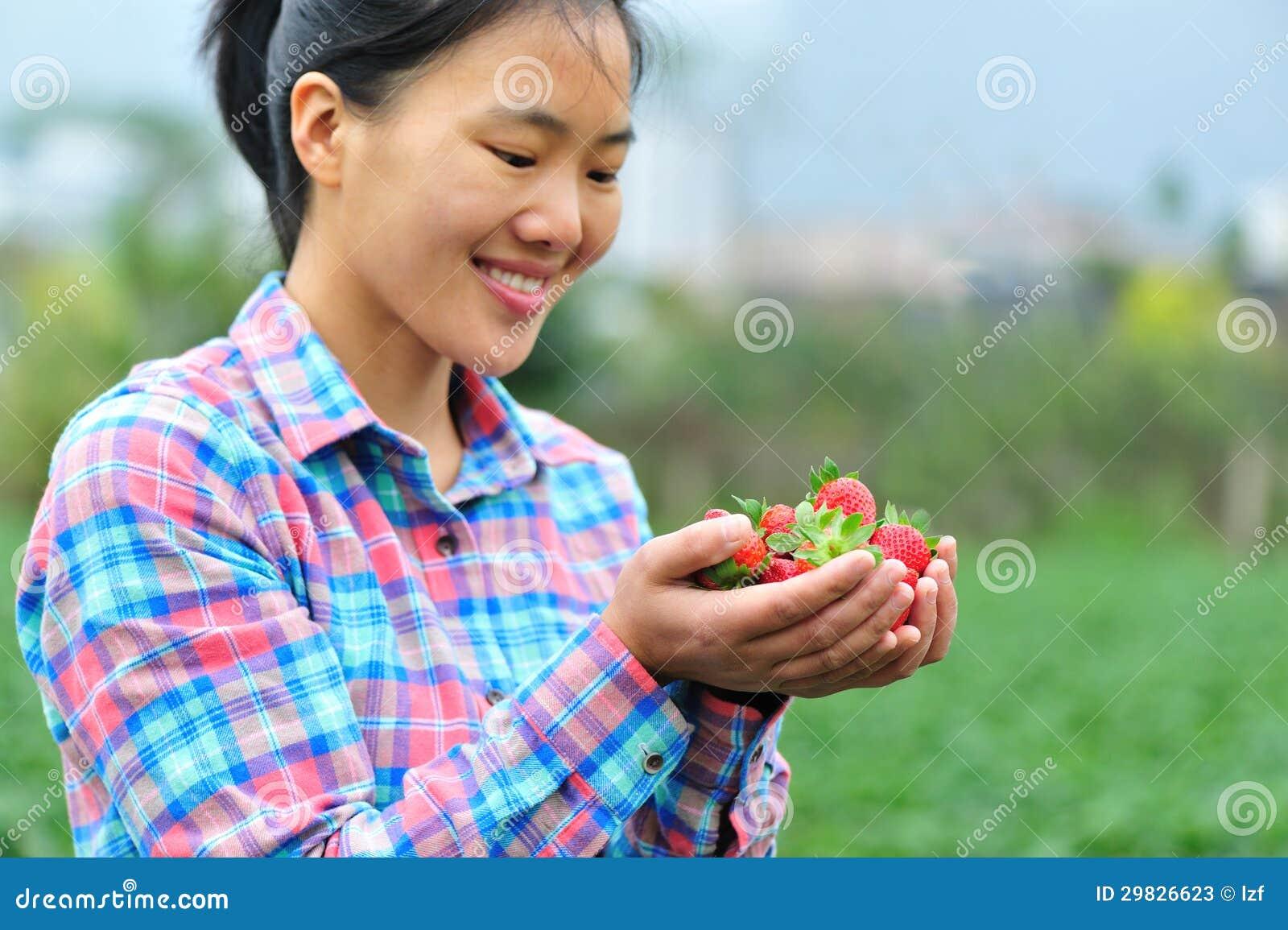 Colheita da morango nas mãos