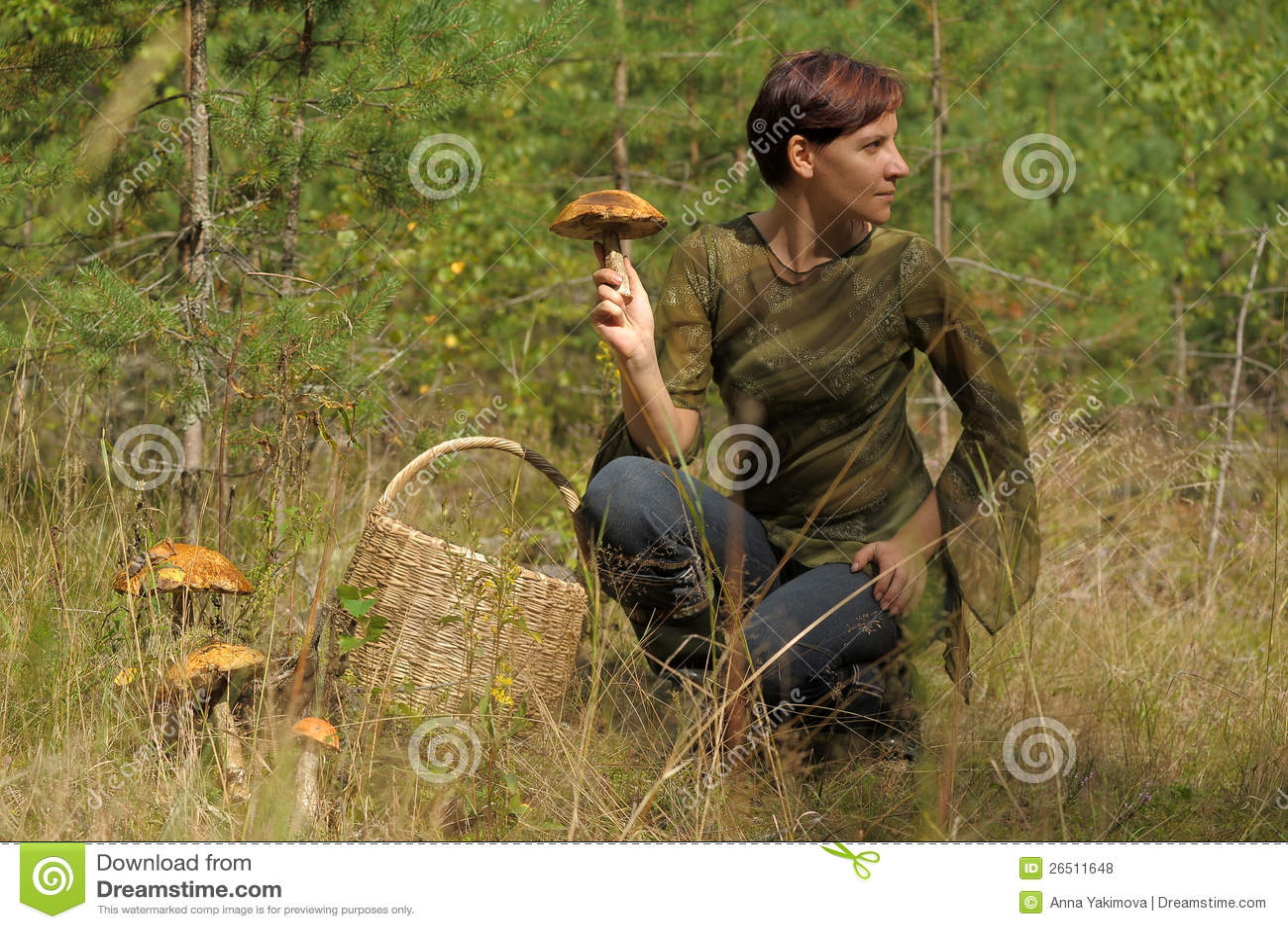 Jovem mulher que recolhe cogumelos