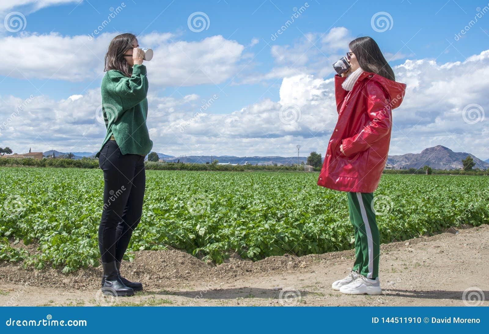 Jovens mulheres de riso de sorriso que t?m o divertimento ao beber o caf? e a conversa exteriores povos, comunica??o e amizade