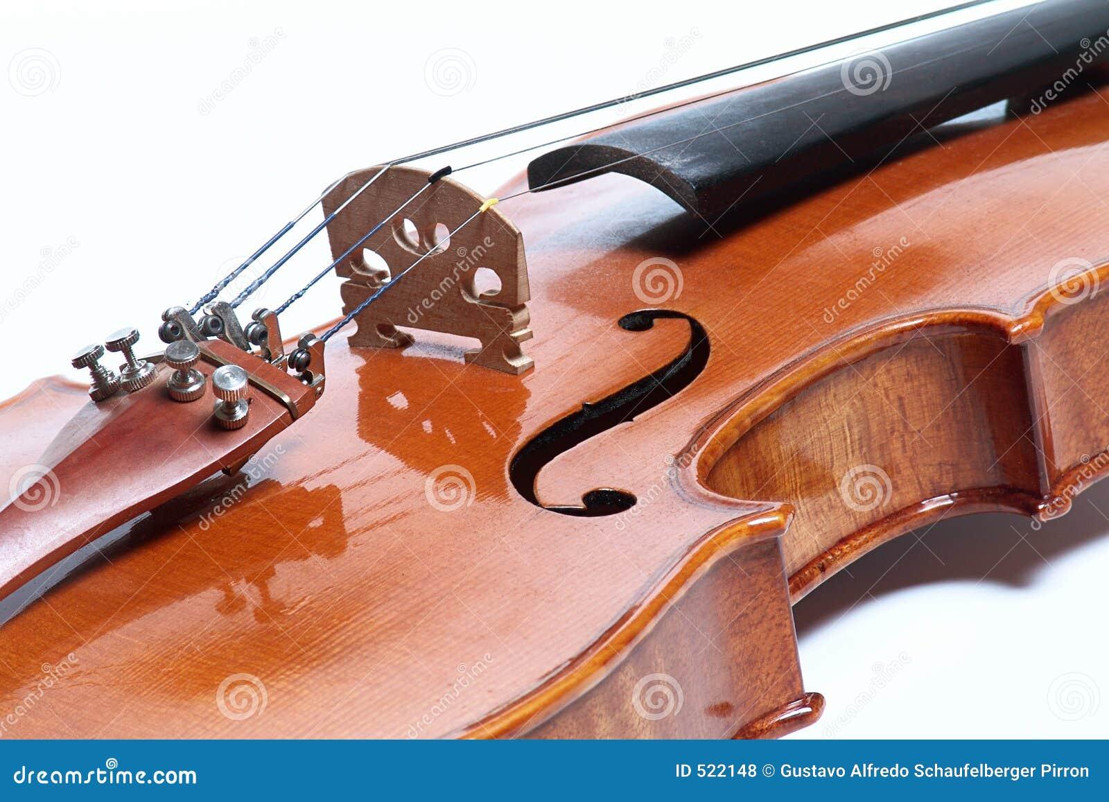 Jpg violin13