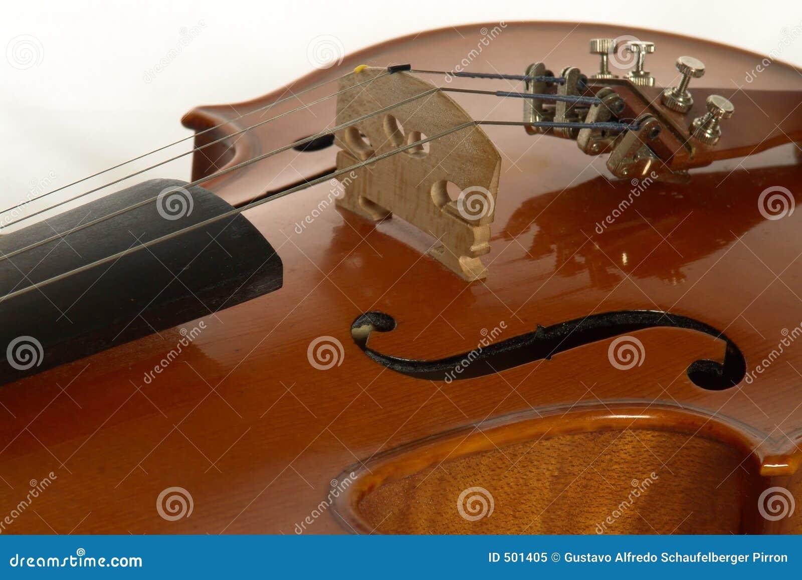 Jpg violin4