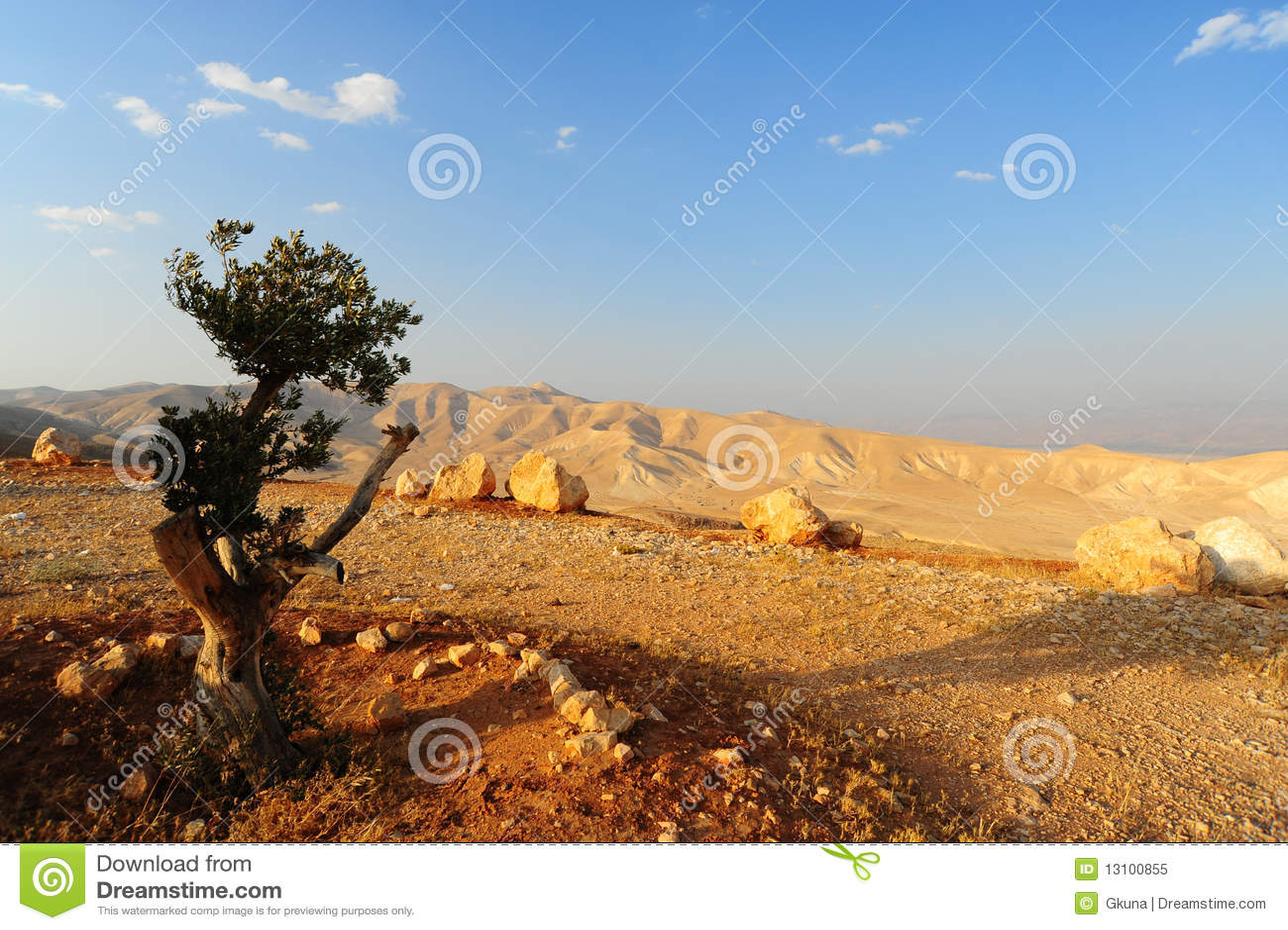 Judea山