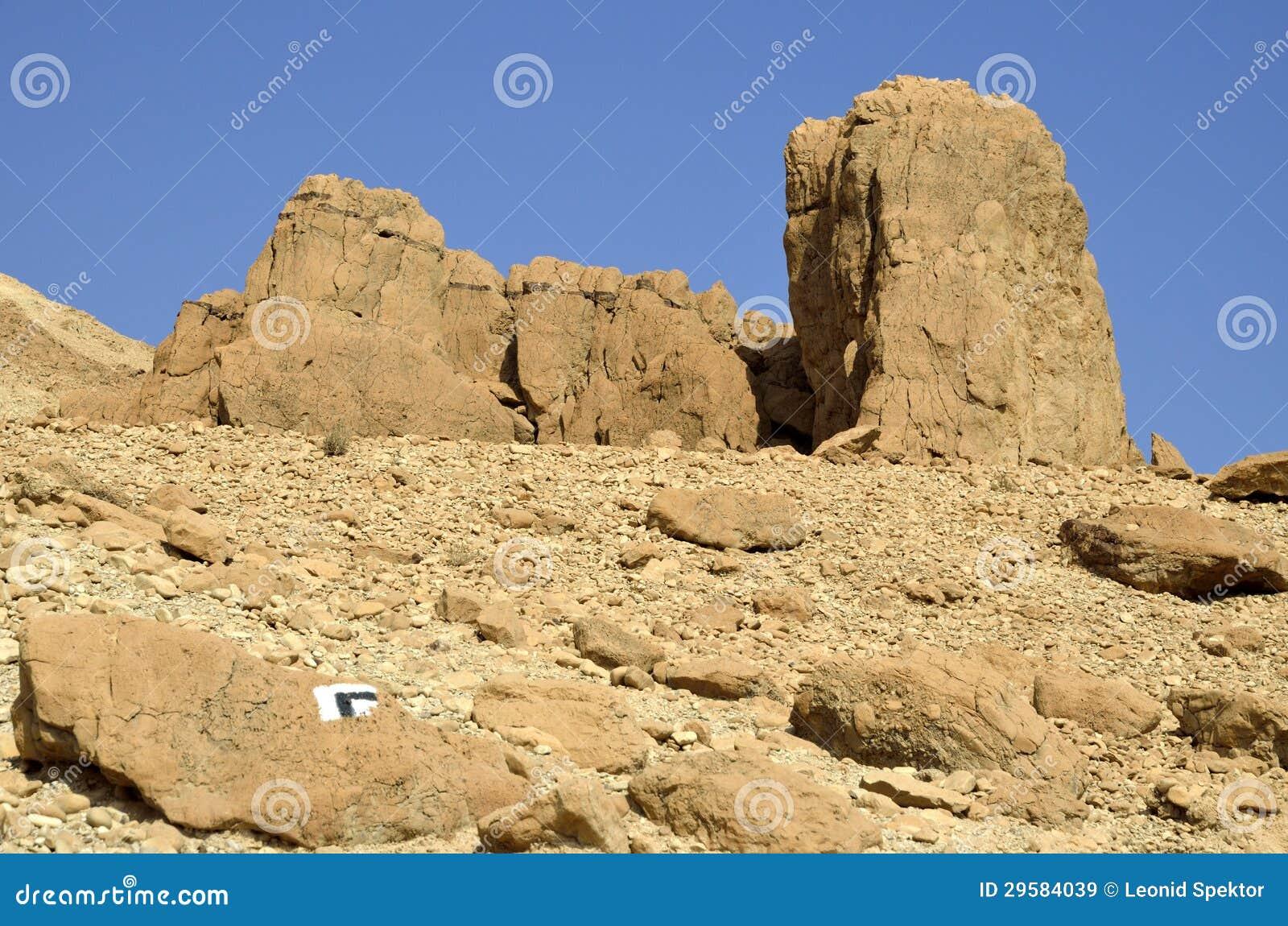 Judea沙漠岩石。