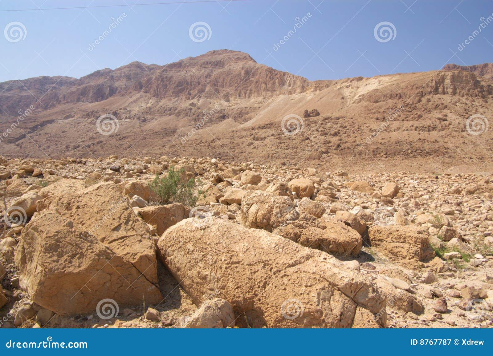 Judea de l Israël de désert