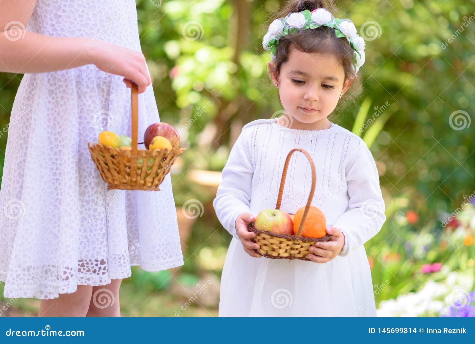 Judisk ferie Shavuot HarvestTwo små flickor i den vita klänningen rymmer en korg med ny frukt i en sommarträdgård