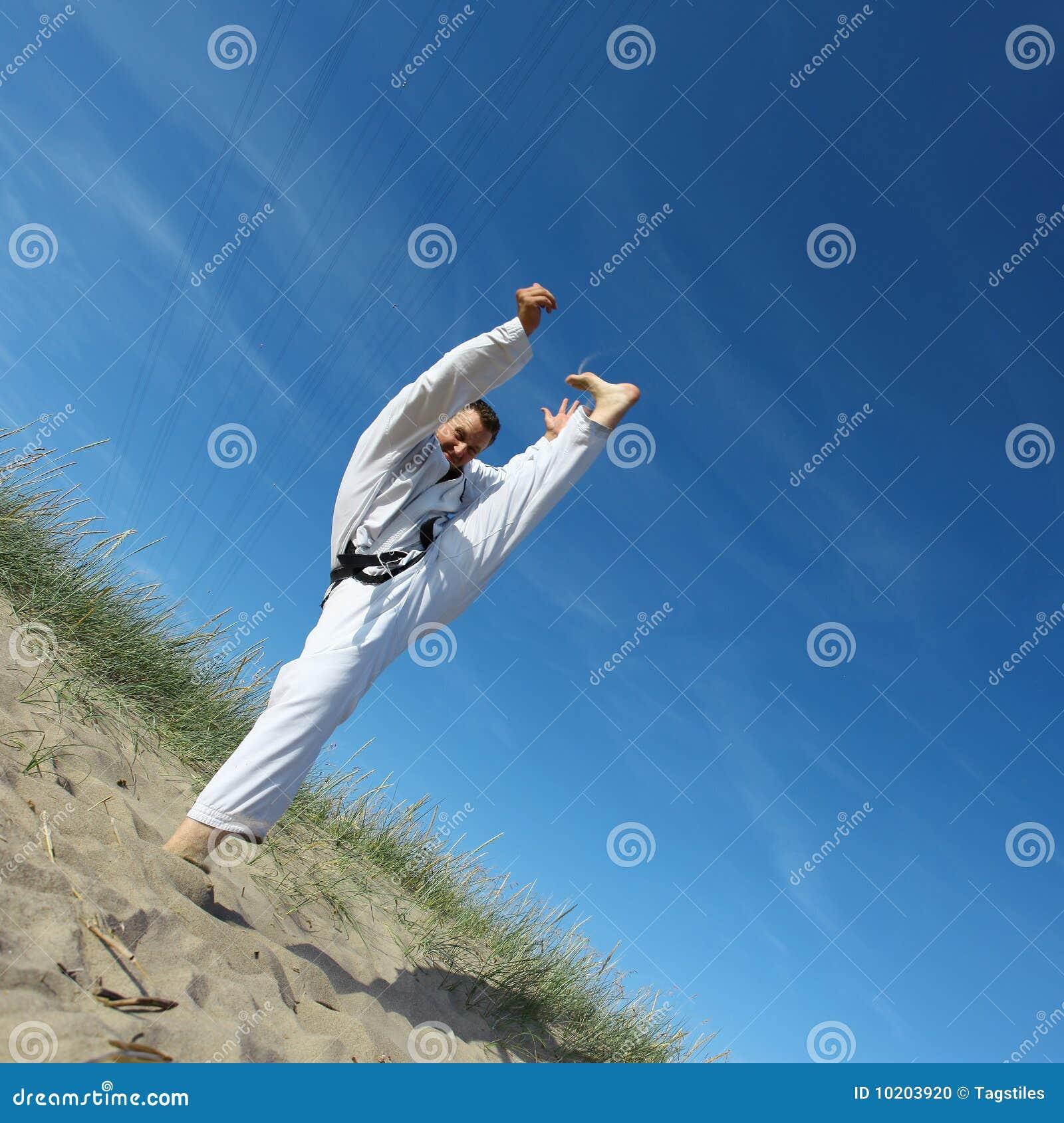Download Judo stockfoto. Bild von künstler, aktiv, verteidigung - 10203920