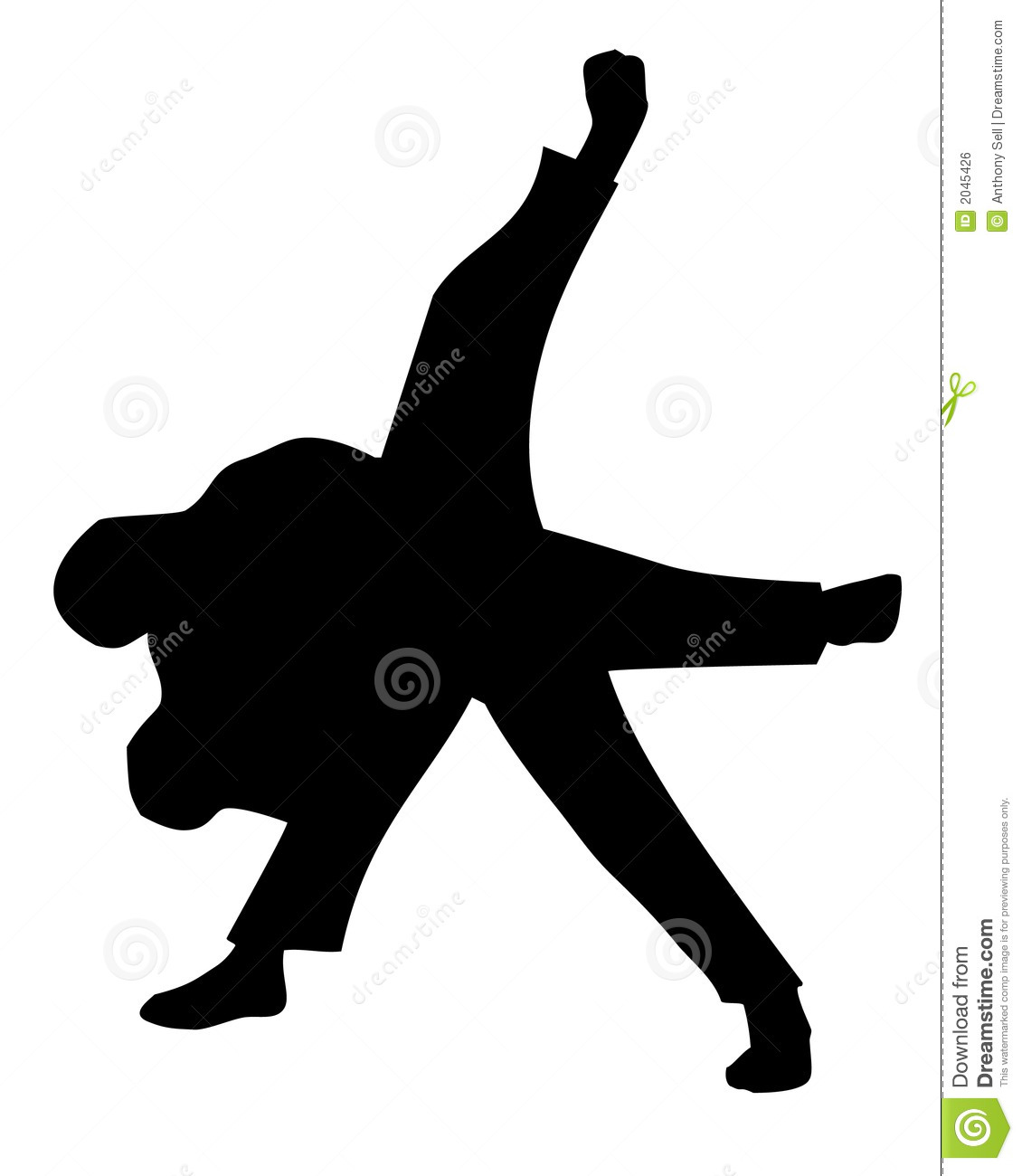 Judo Throw Royalty Free Stock Image - Image: 2045426