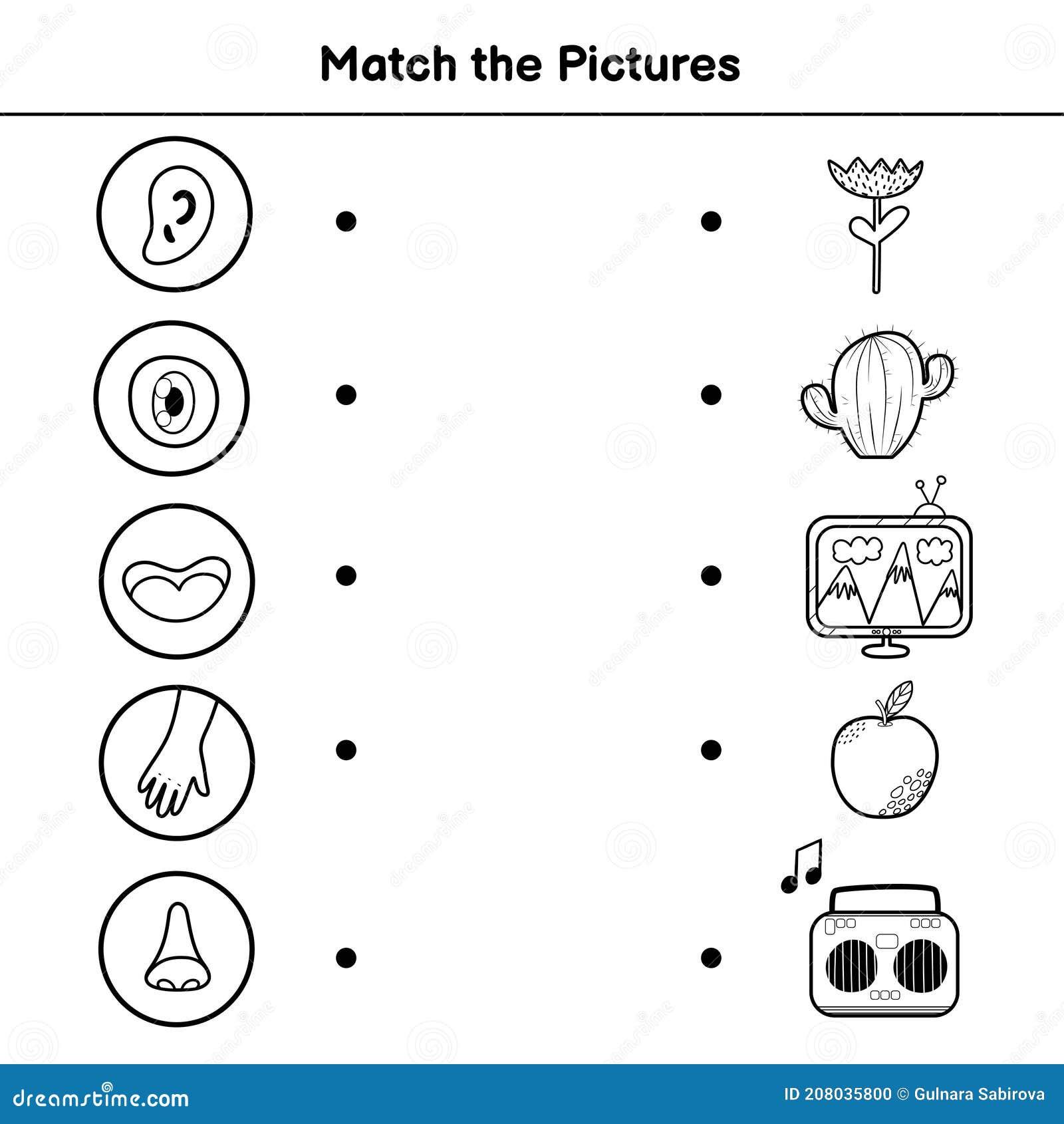 Juego De Cinco Sentidos Para Niños Coincidir Con La Página De Actividad De Imágenes Ilustración Del Vector Ilustración De Kindergarten Vista 208035800