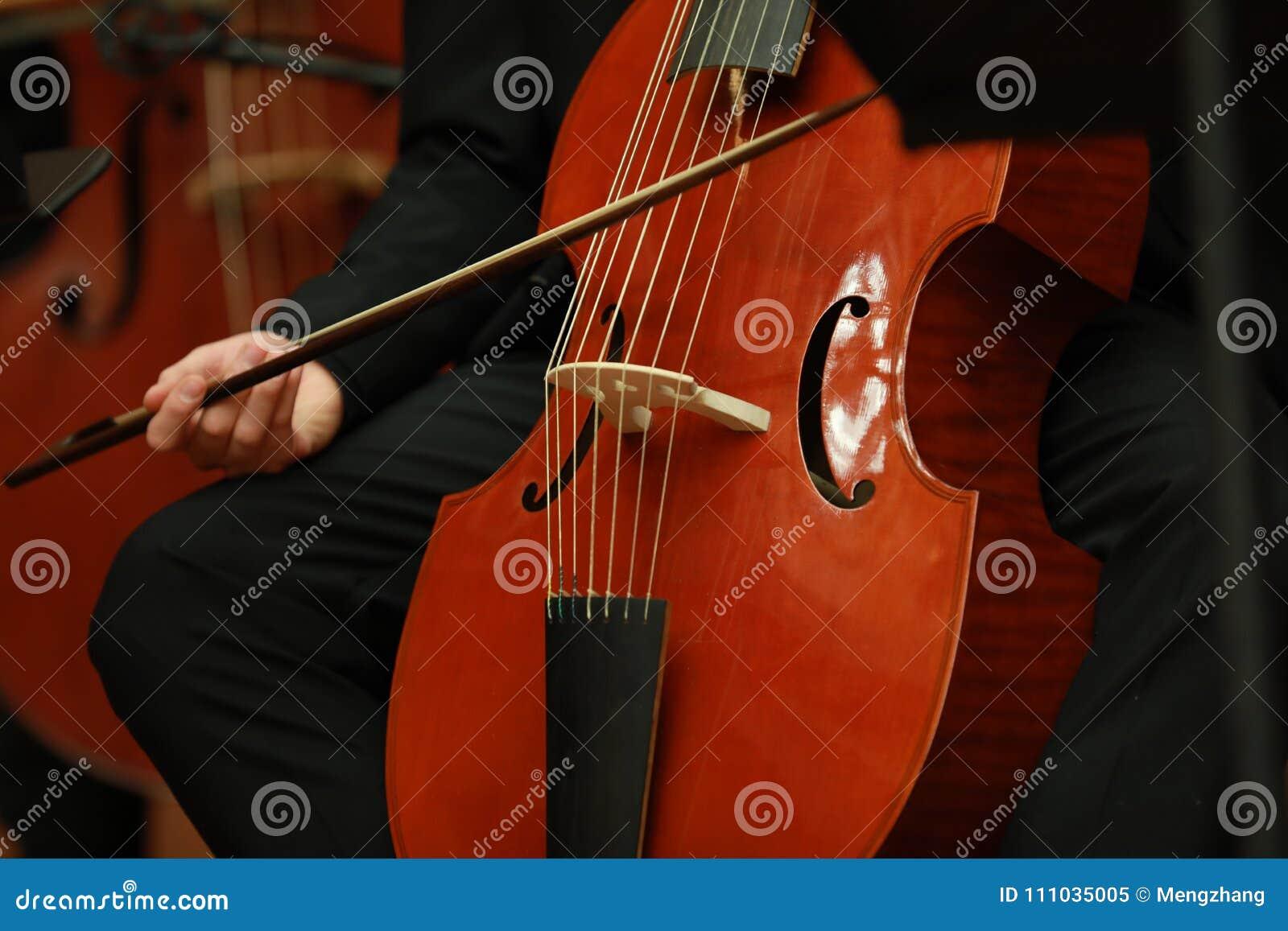 Jugador del violoncelo Compositor, música Retrato del violoncelista que juega música clásica en el violoncelo en fondo negro Copy