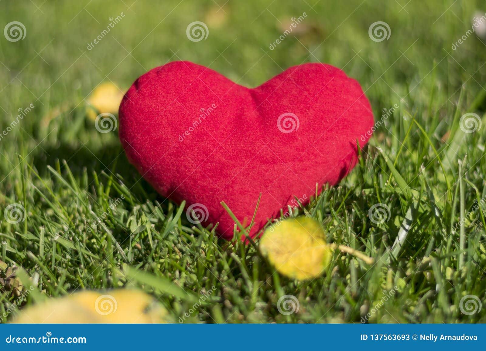 Juguete de la felpa - corazón Un gran regalo para el día de tarjeta del día de San Valentín Amor de las demostraciones