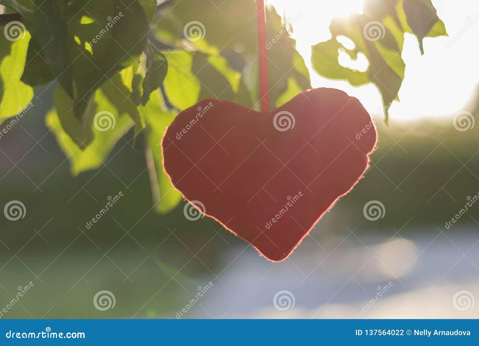 Juguete de la felpa - un corazón atado a un árbol con las hojas verdes