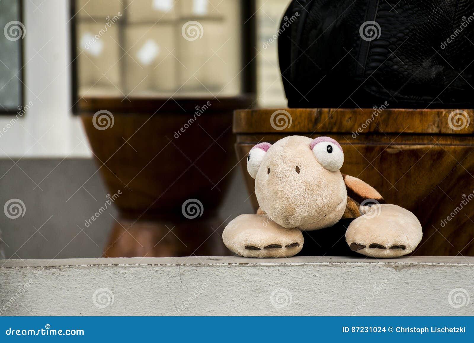 Juguete lindo de la marioneta de la tortuga que presenta la cámara interior