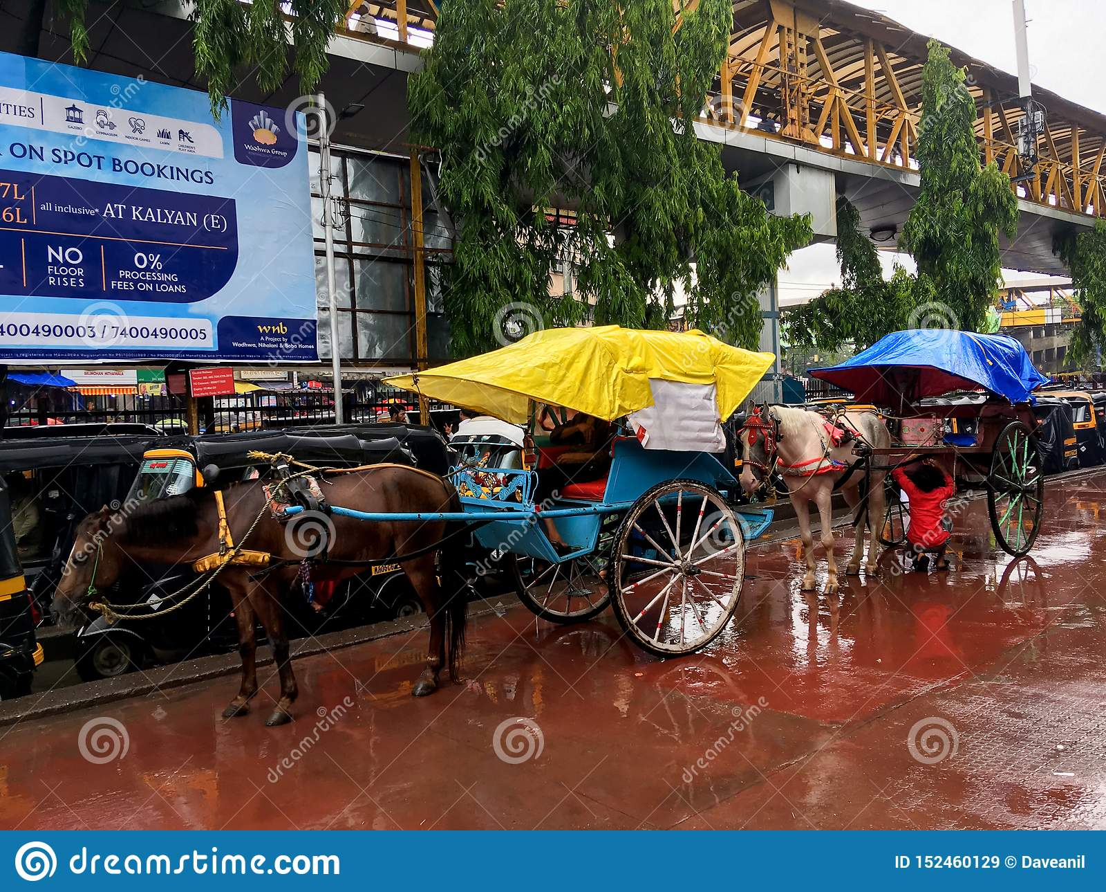 Tongahorse Cart at Kalyan railway station on monsoon Maharashtra INDIA